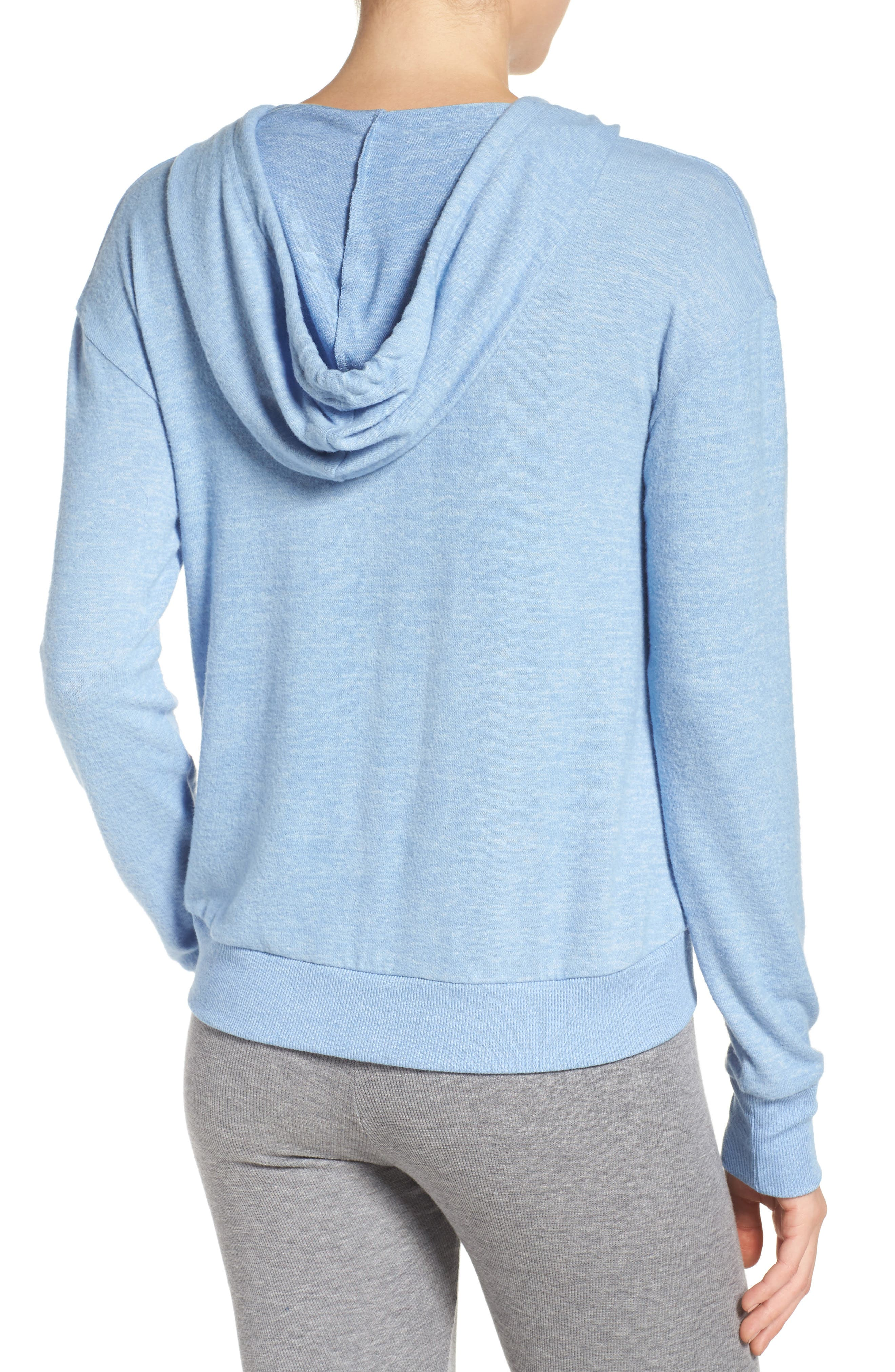Pullover Hoodie,                             Alternate thumbnail 36, color,