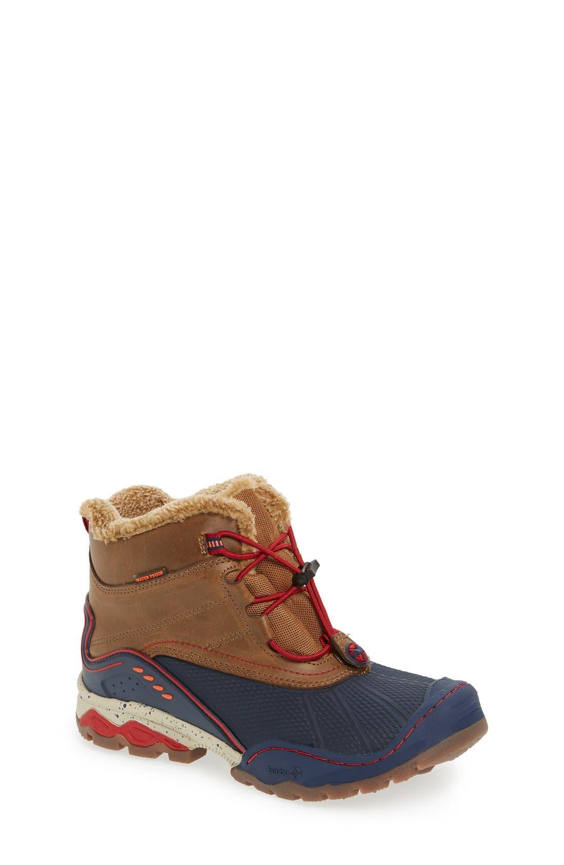'Baltoro 3' Waterproof Insulated Snow Boot,                             Main thumbnail 1, color,                             BROWN/ NAVY
