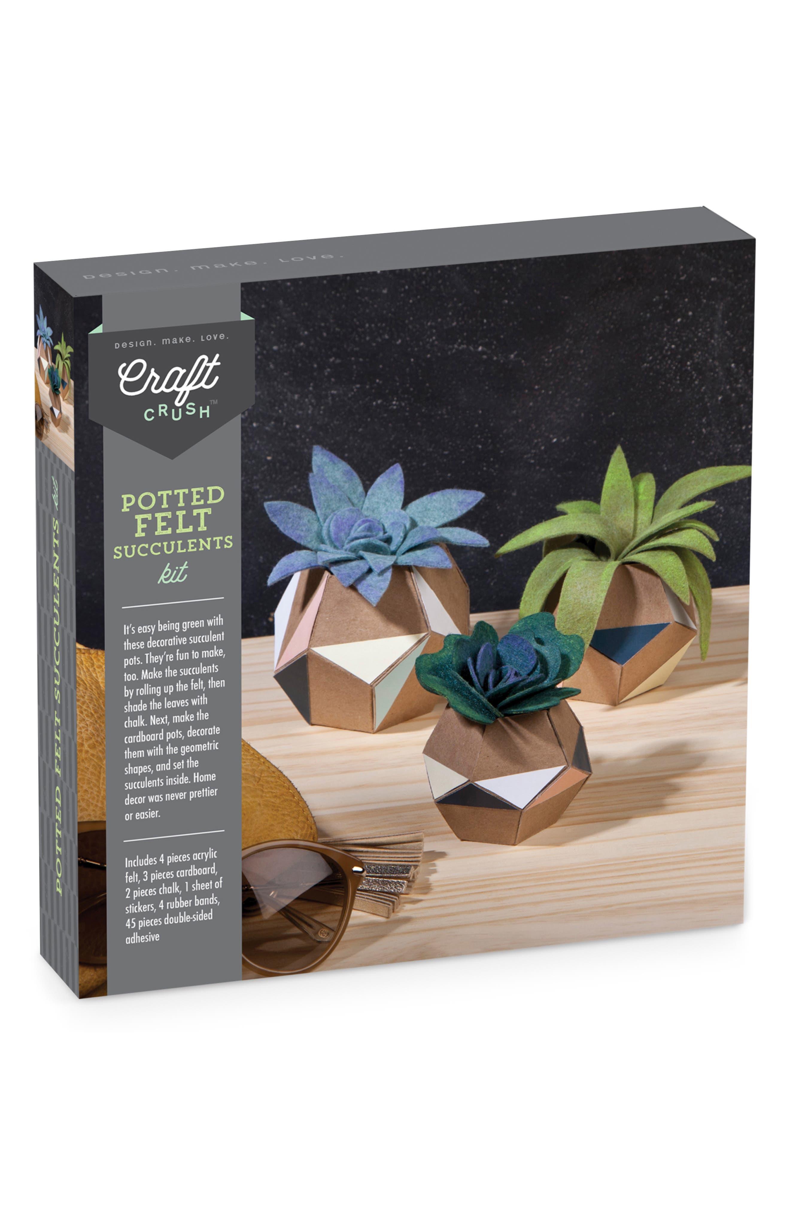 Felt Succulent Pot Craft Kit,                         Main,                         color, MULTI