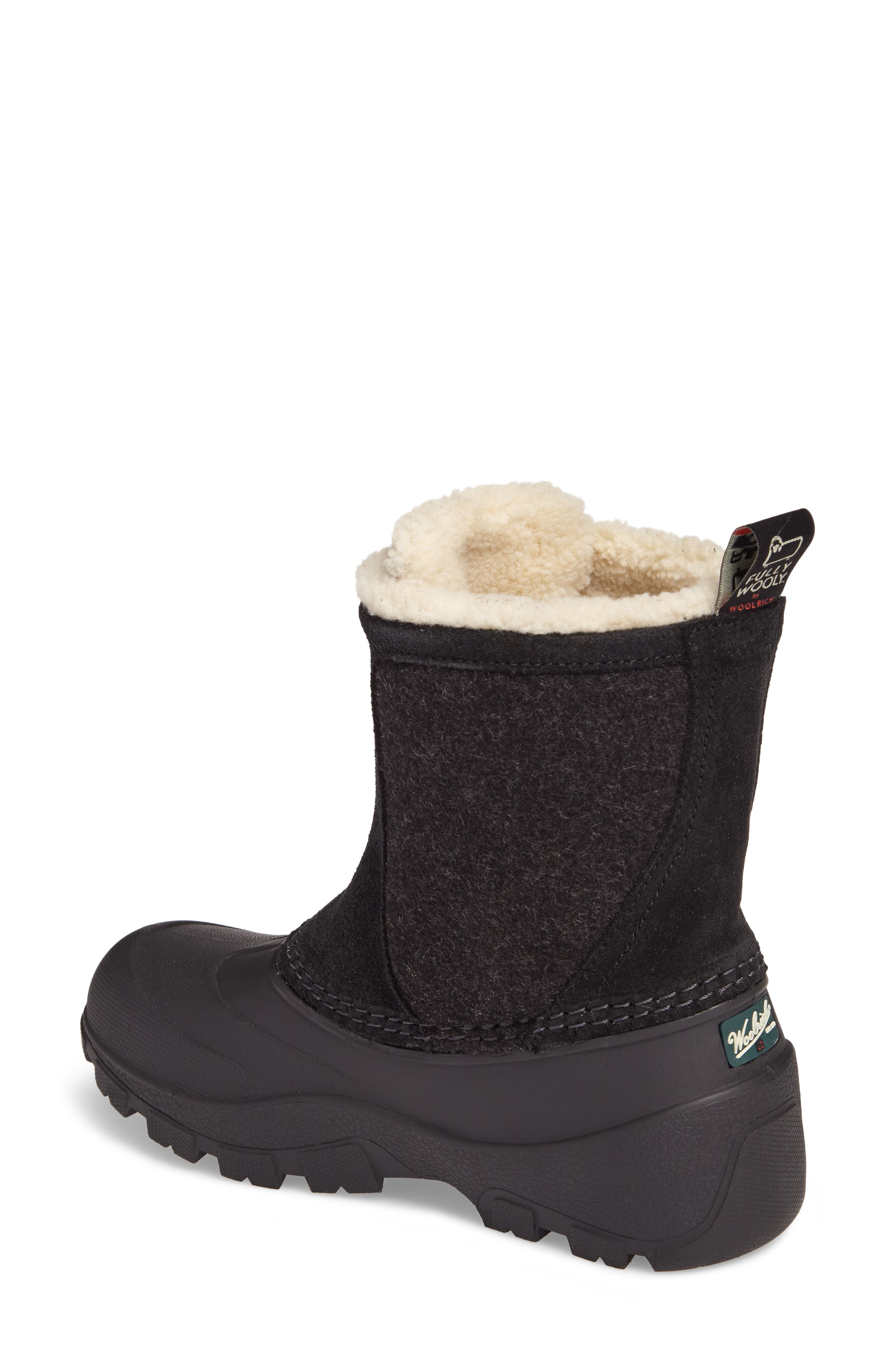 Fully Wooly Icecat Waterproof Insulated Winter Boot,                             Alternate thumbnail 2, color,                             001