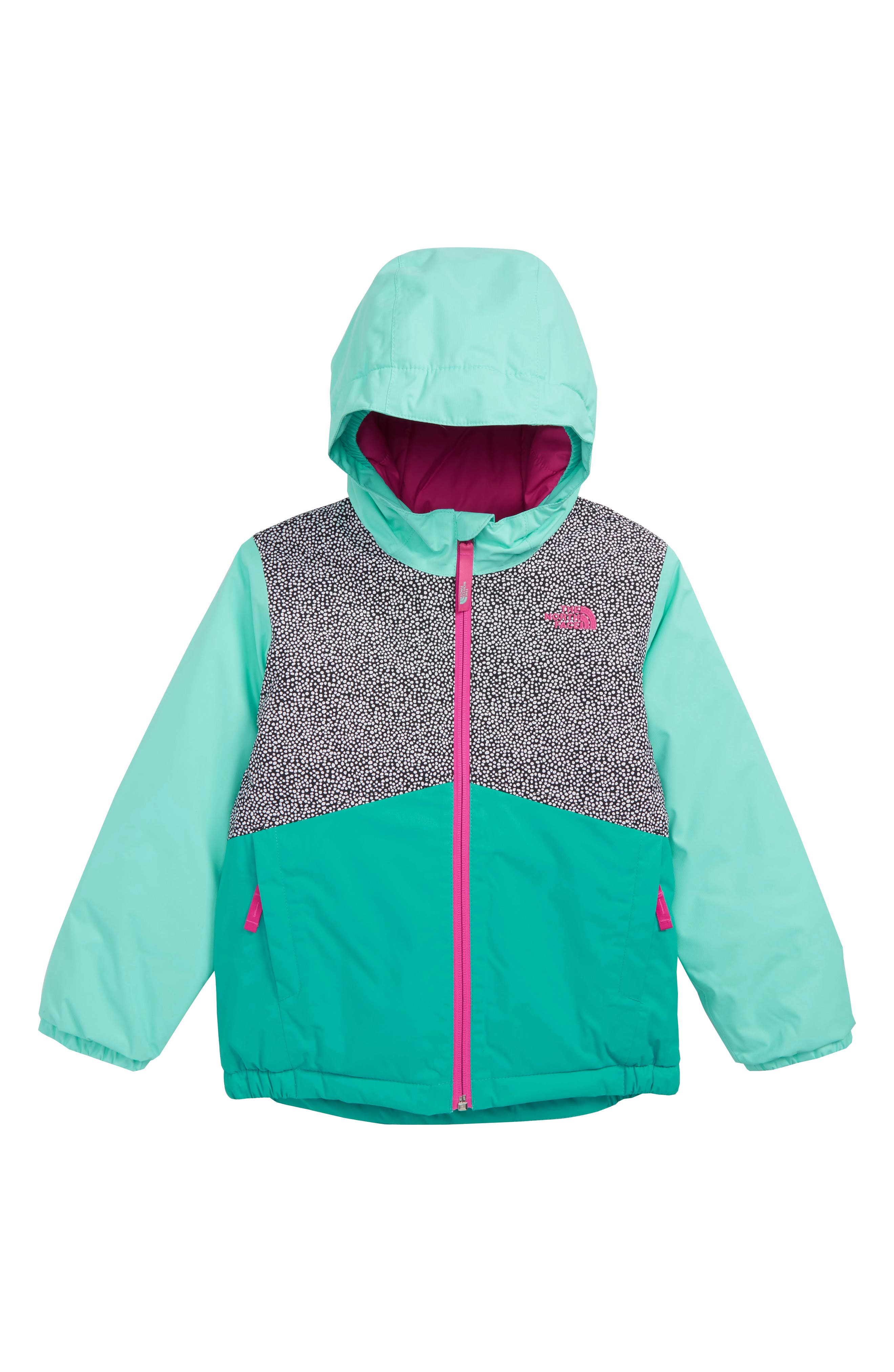 Snowquest Waterproof Insulated Winter Jacket,                             Main thumbnail 1, color,                             TNF WHITE MINI DOT PRINT