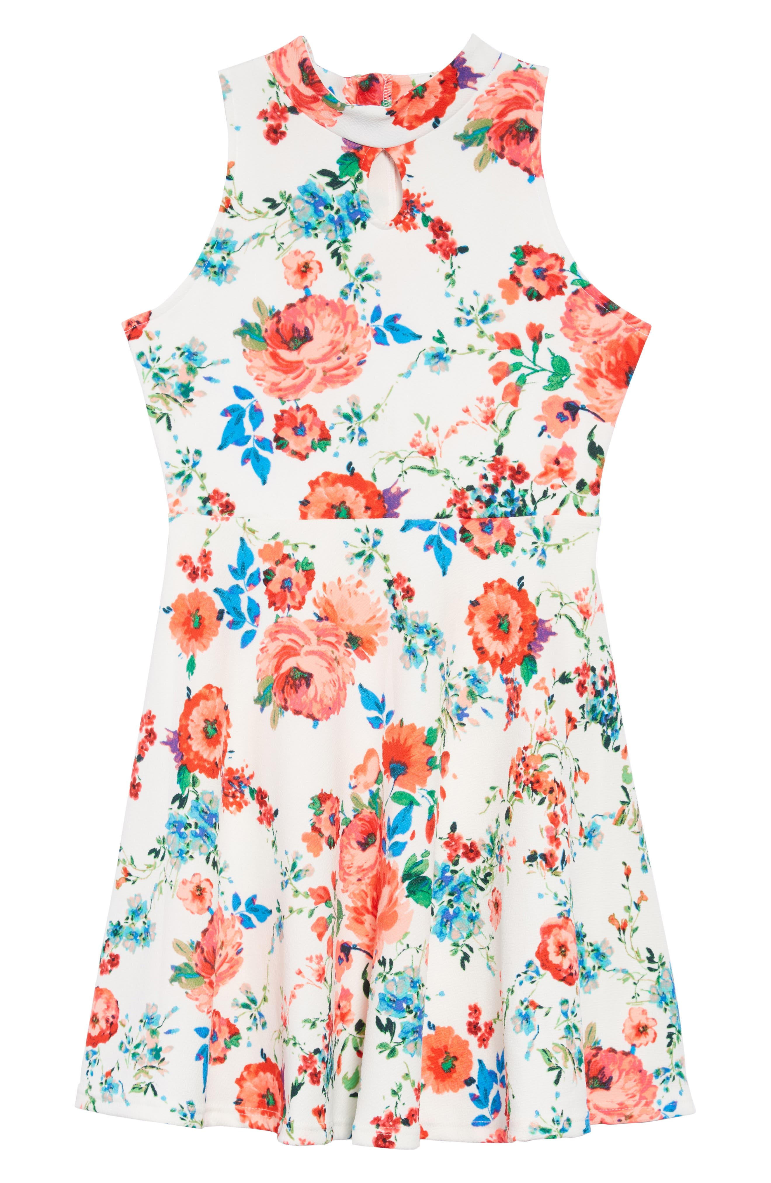 Floral Skater Dress,                             Main thumbnail 1, color,                             400
