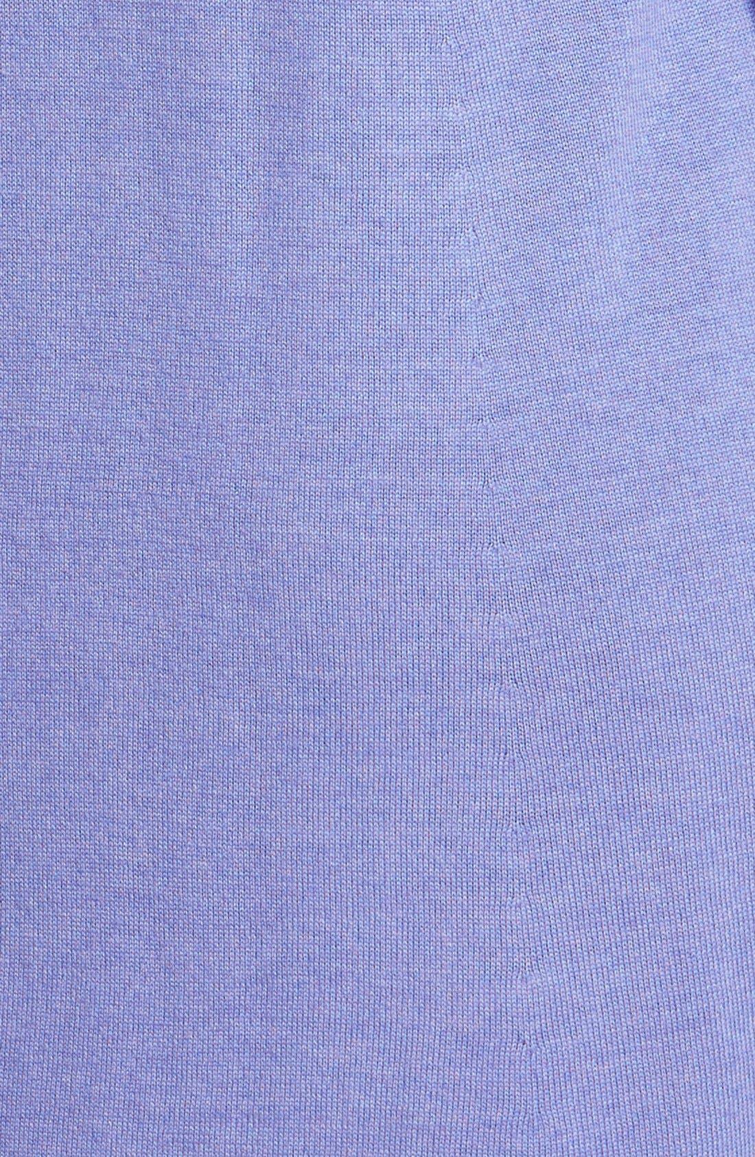 Lightweight Merino Jersey V-Neck Tunic,                             Alternate thumbnail 63, color,