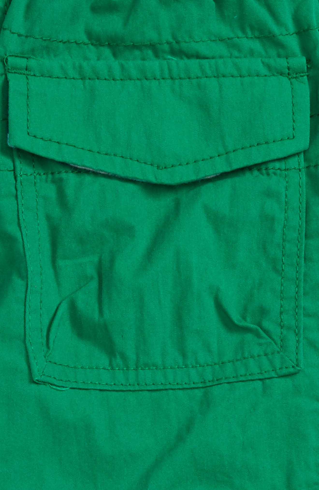 Lined Cargo Pants,                             Alternate thumbnail 3, color,                             315