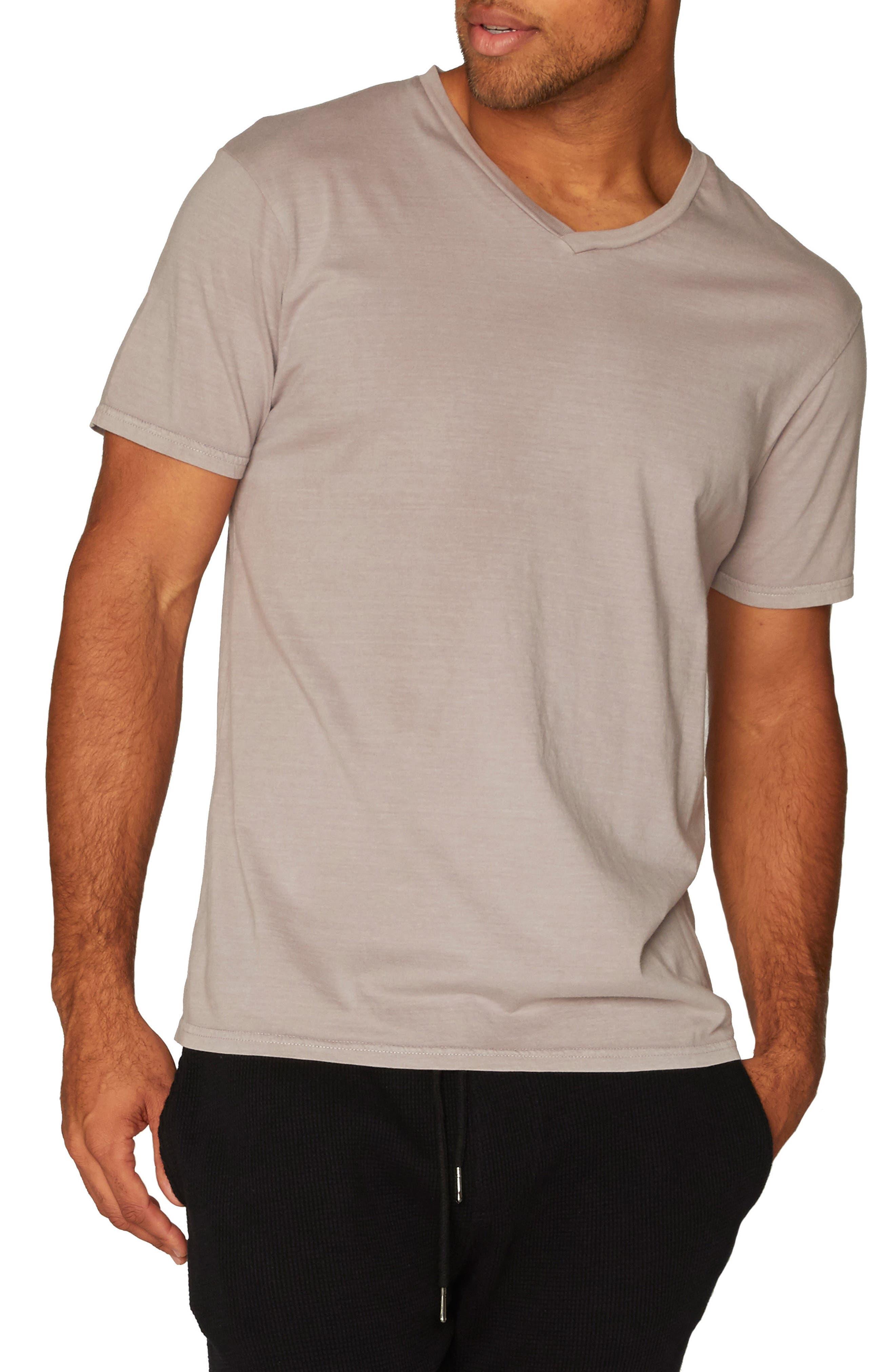 Standard V-Neck T-Shirt,                             Main thumbnail 2, color,