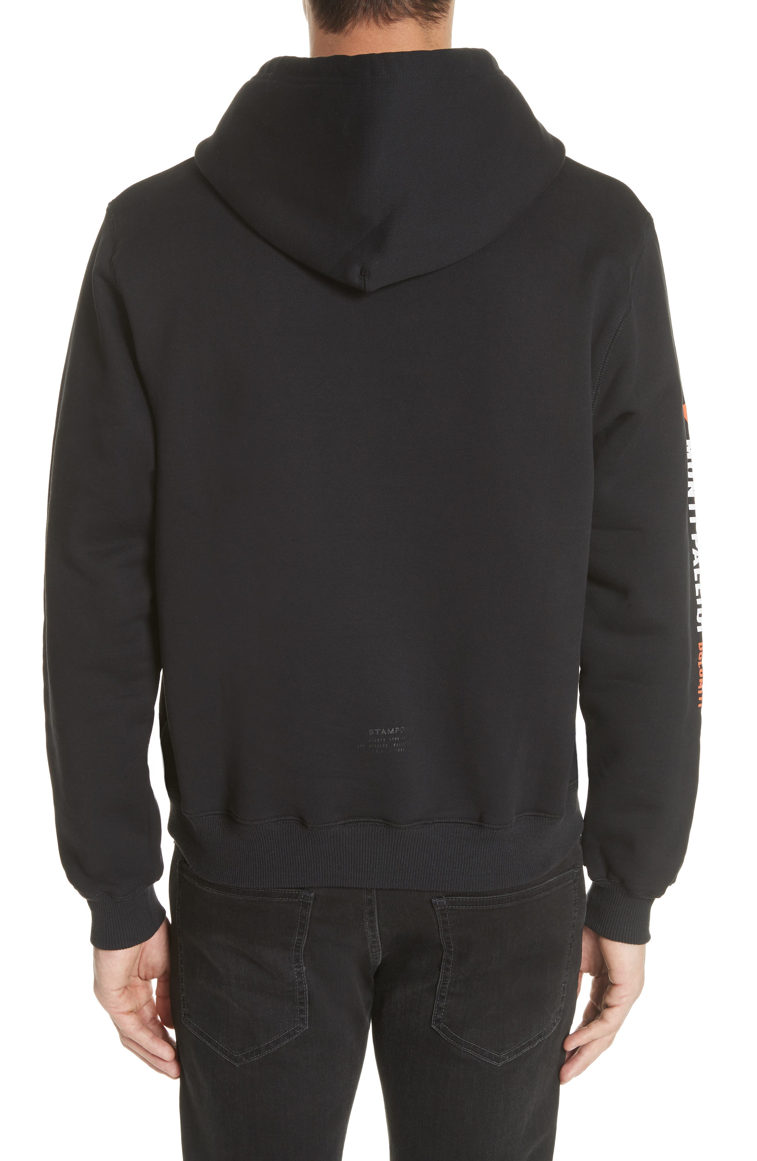 Monti Pallidi Graphic Hoodie,                             Alternate thumbnail 2, color,                             001
