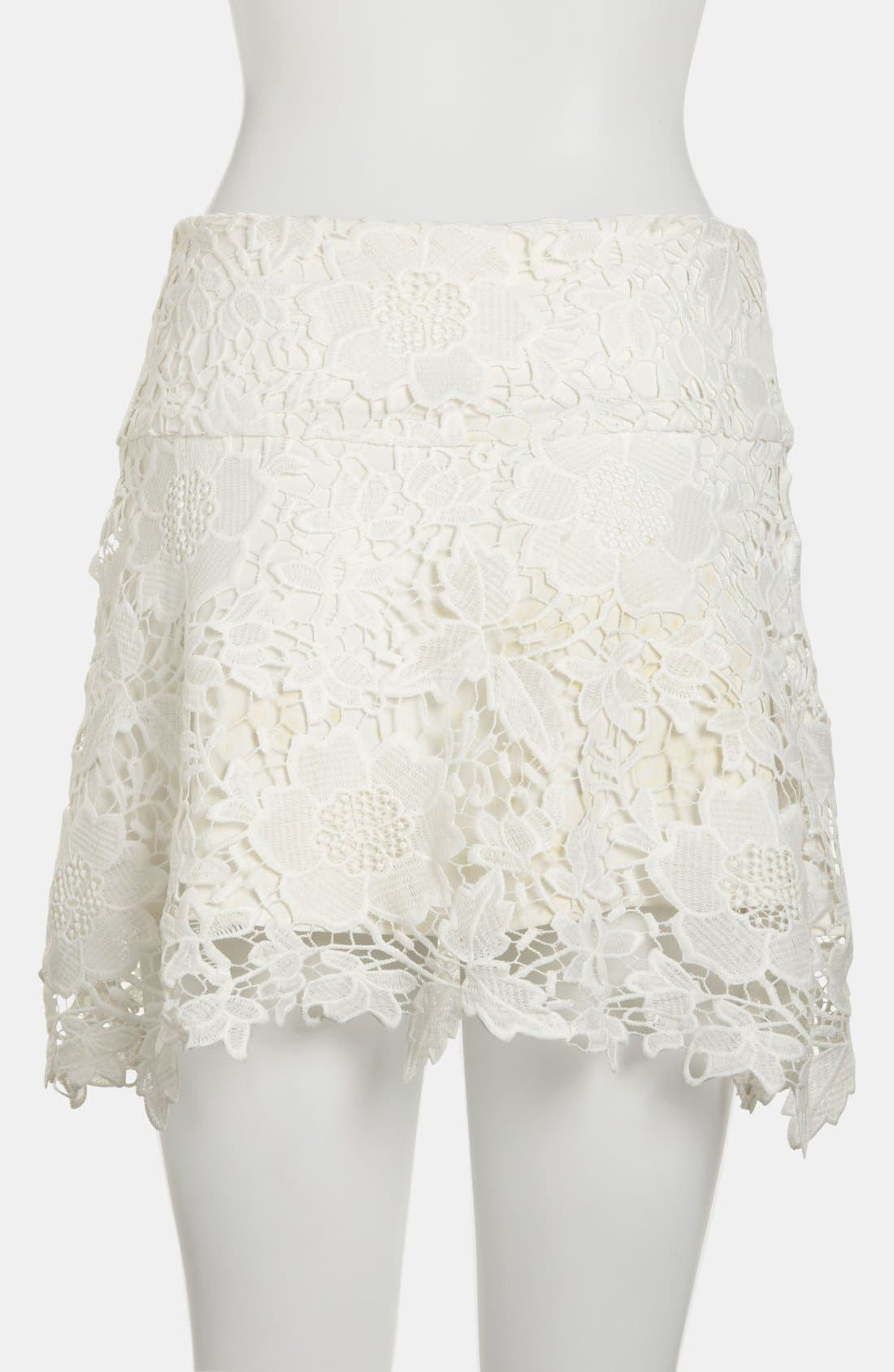 Embroidered Lace Skirt,                             Alternate thumbnail 2, color,                             100