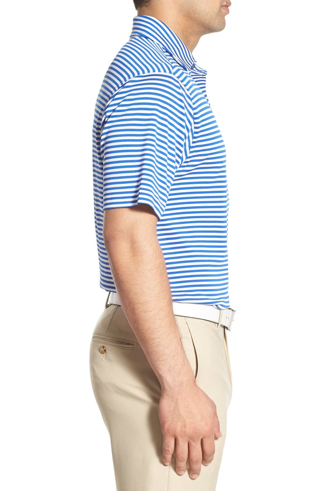 XH2O Feed Stripe Stretch Golf Polo,                             Alternate thumbnail 46, color,