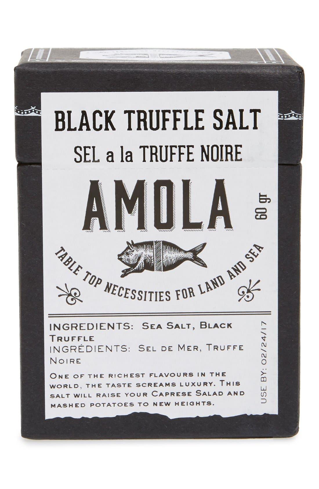 Amola Black Truffle Salt,                             Main thumbnail 1, color,                             201