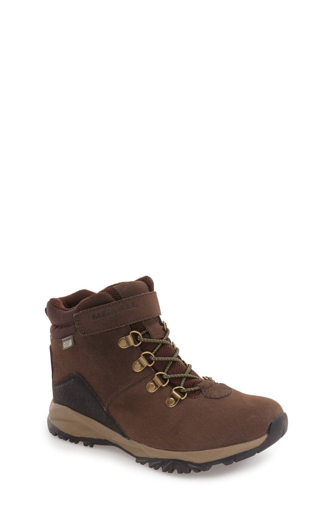 'Alpine' Waterproof Boot,                             Main thumbnail 1, color,                             BROWN LEATHER