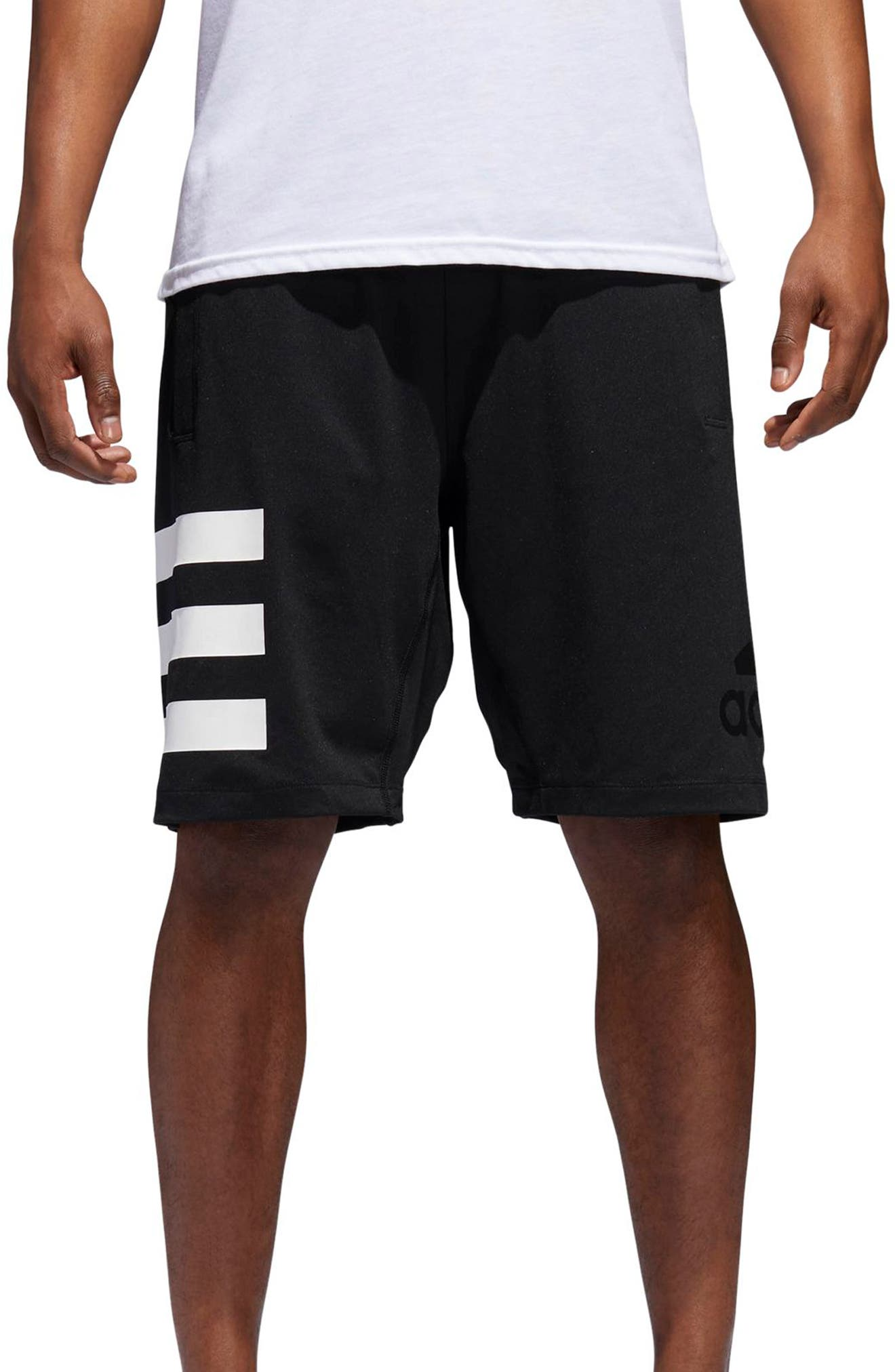 SB Hype Icon Shorts,                         Main,                         color,