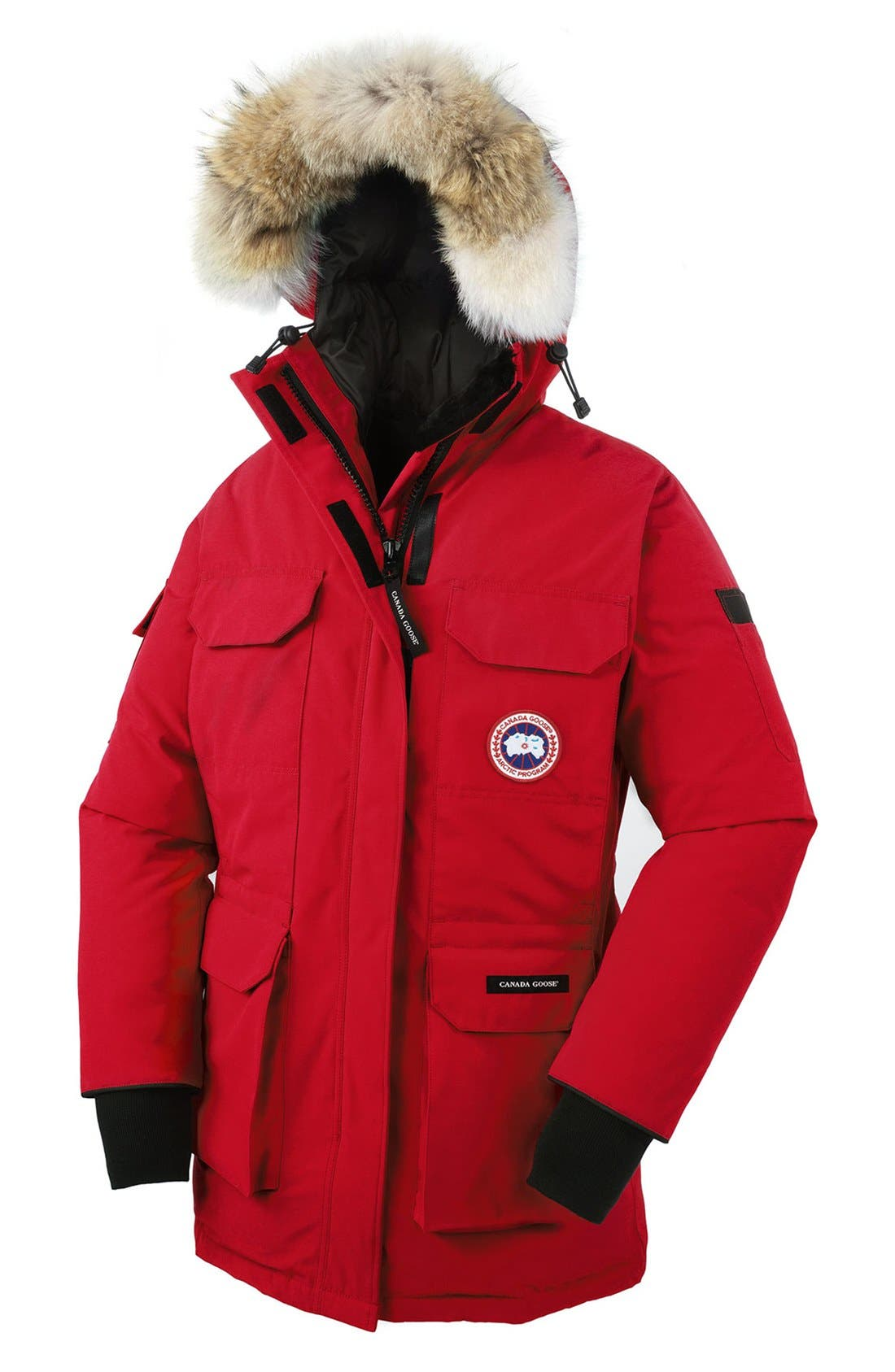 'Expedition' Relaxed Fit Down Parka with Genuine Coyote Fur,                             Alternate thumbnail 5, color,                             600