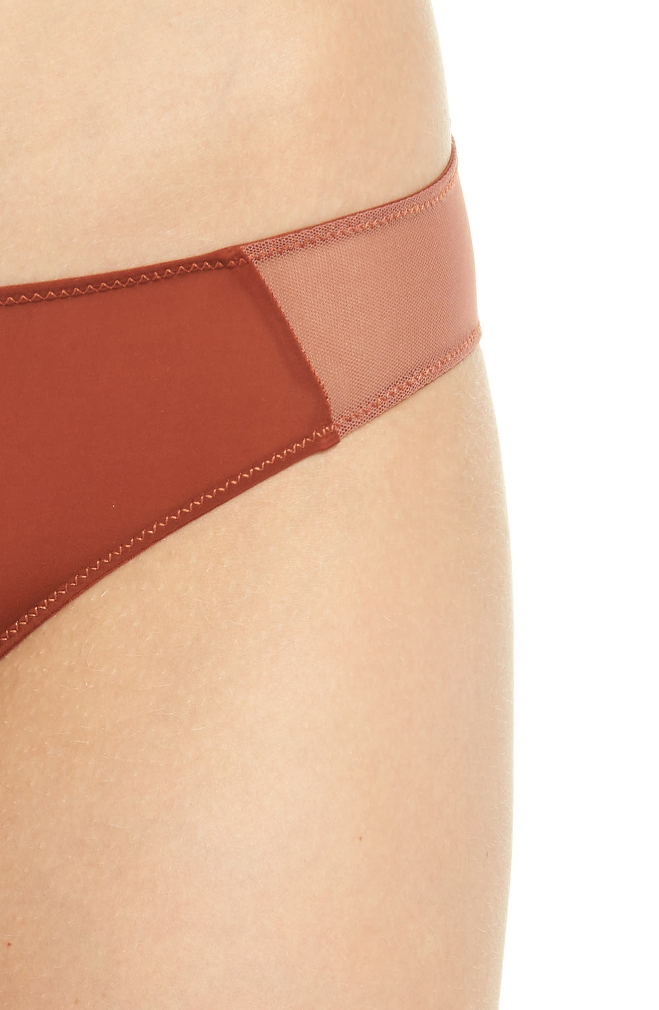 Mesh Trim Bikini,                             Alternate thumbnail 4, color,                             MAPLE SYRUP