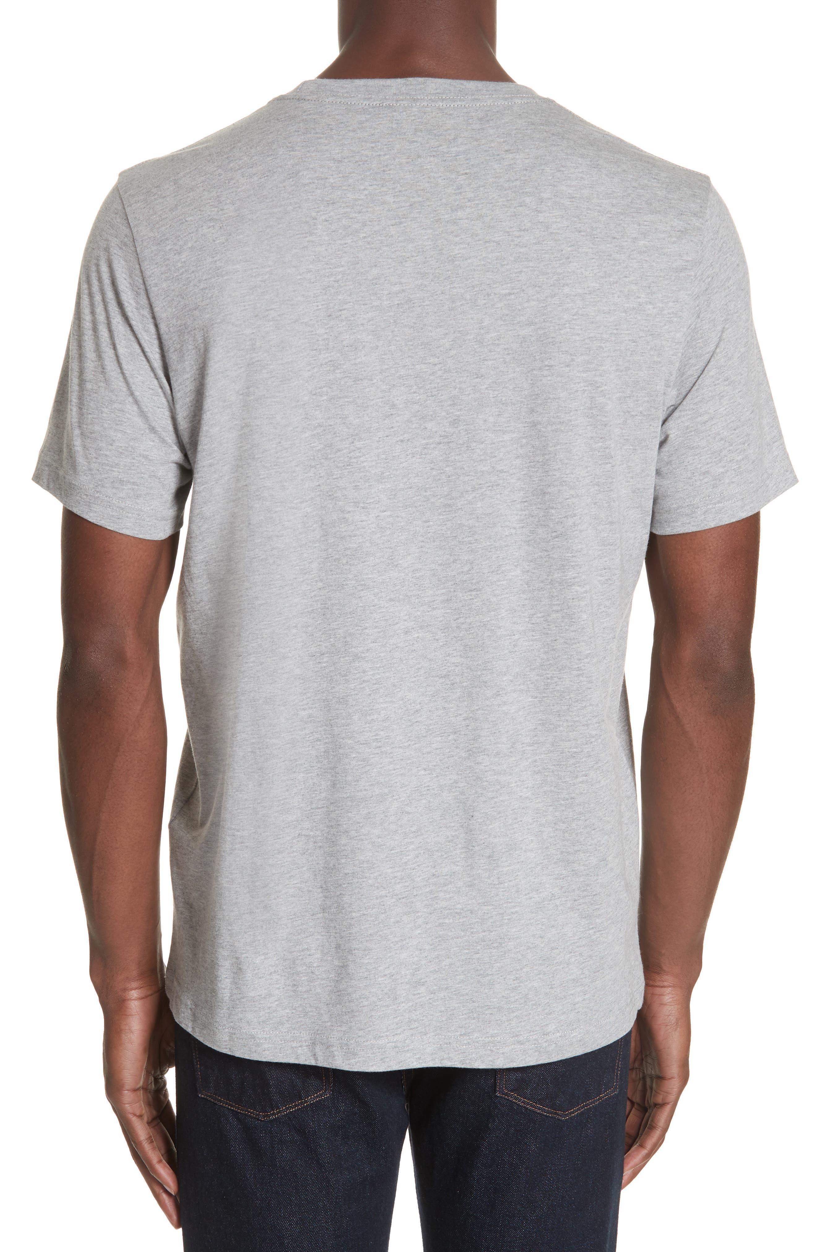 Zebra Organic Cotton T-Shirt,                             Alternate thumbnail 2, color,                             GREY