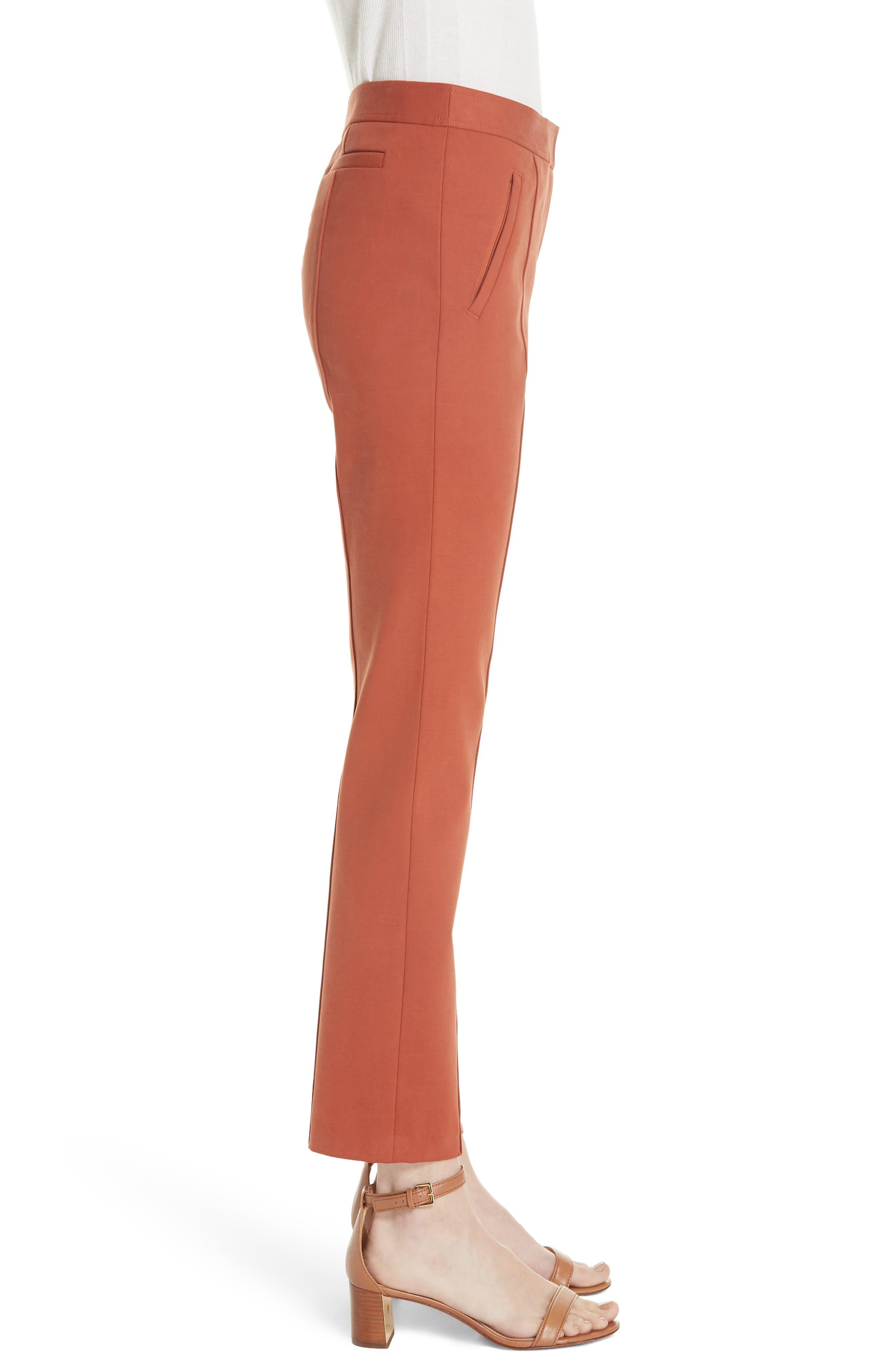 Vanner Slim Leg Ankle Pants,                             Alternate thumbnail 3, color,                             DESERT SPICE