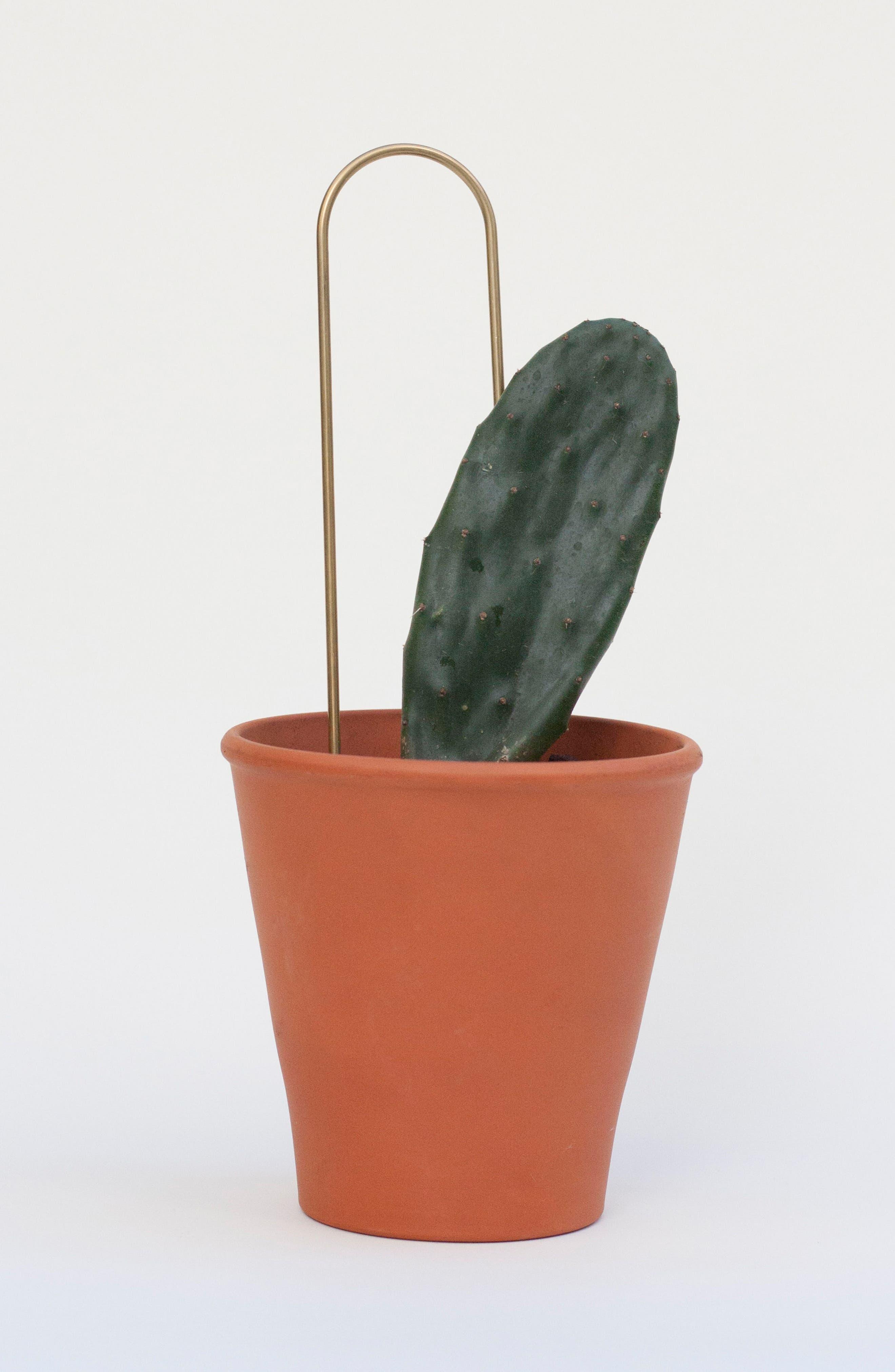 Set of 3 Plant Sticks,                             Alternate thumbnail 12, color,                             BRASS