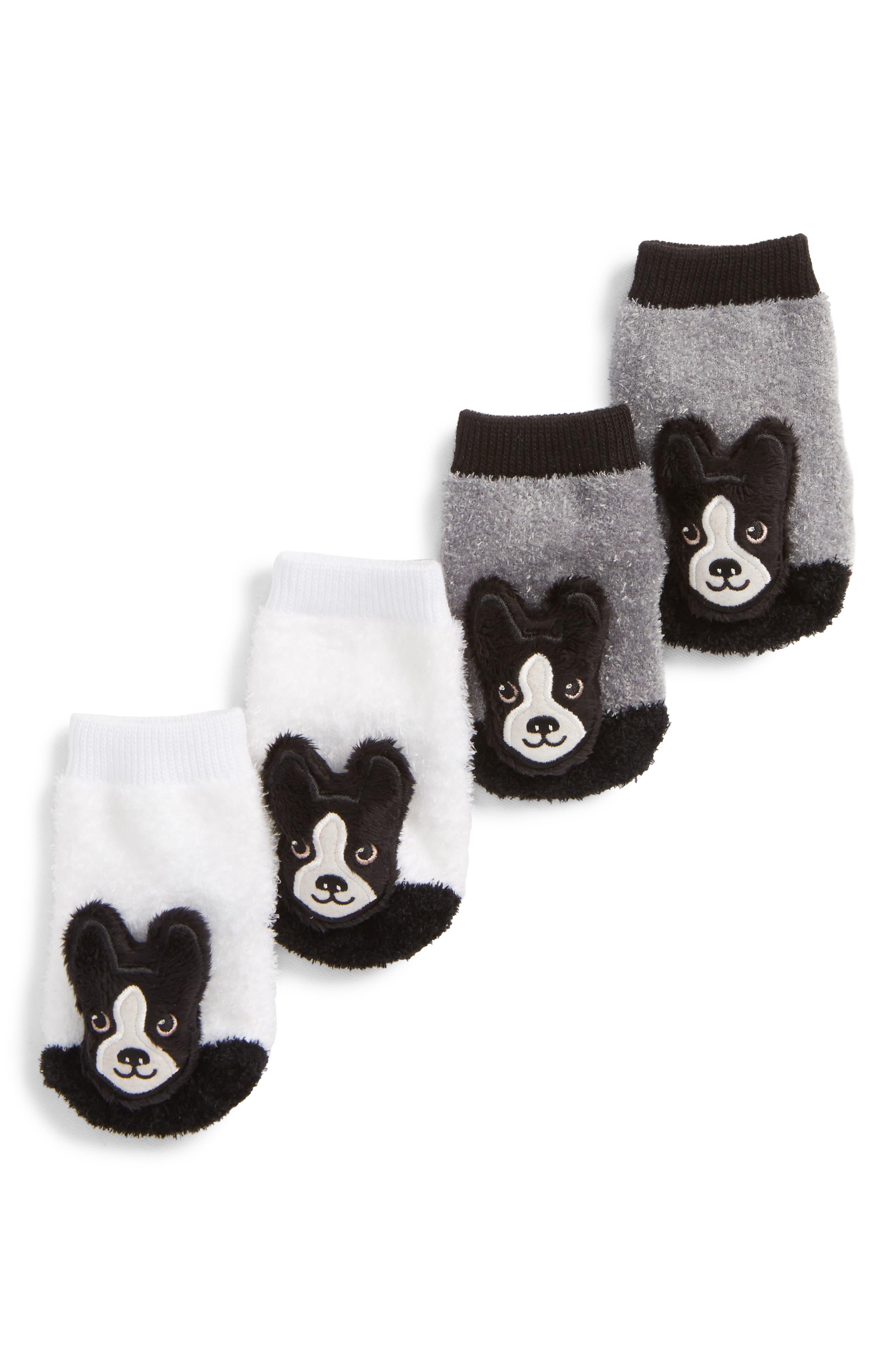 2-Pack Boston Terrier Rattle Socks,                             Main thumbnail 1, color,                             BLACK/ WHITE