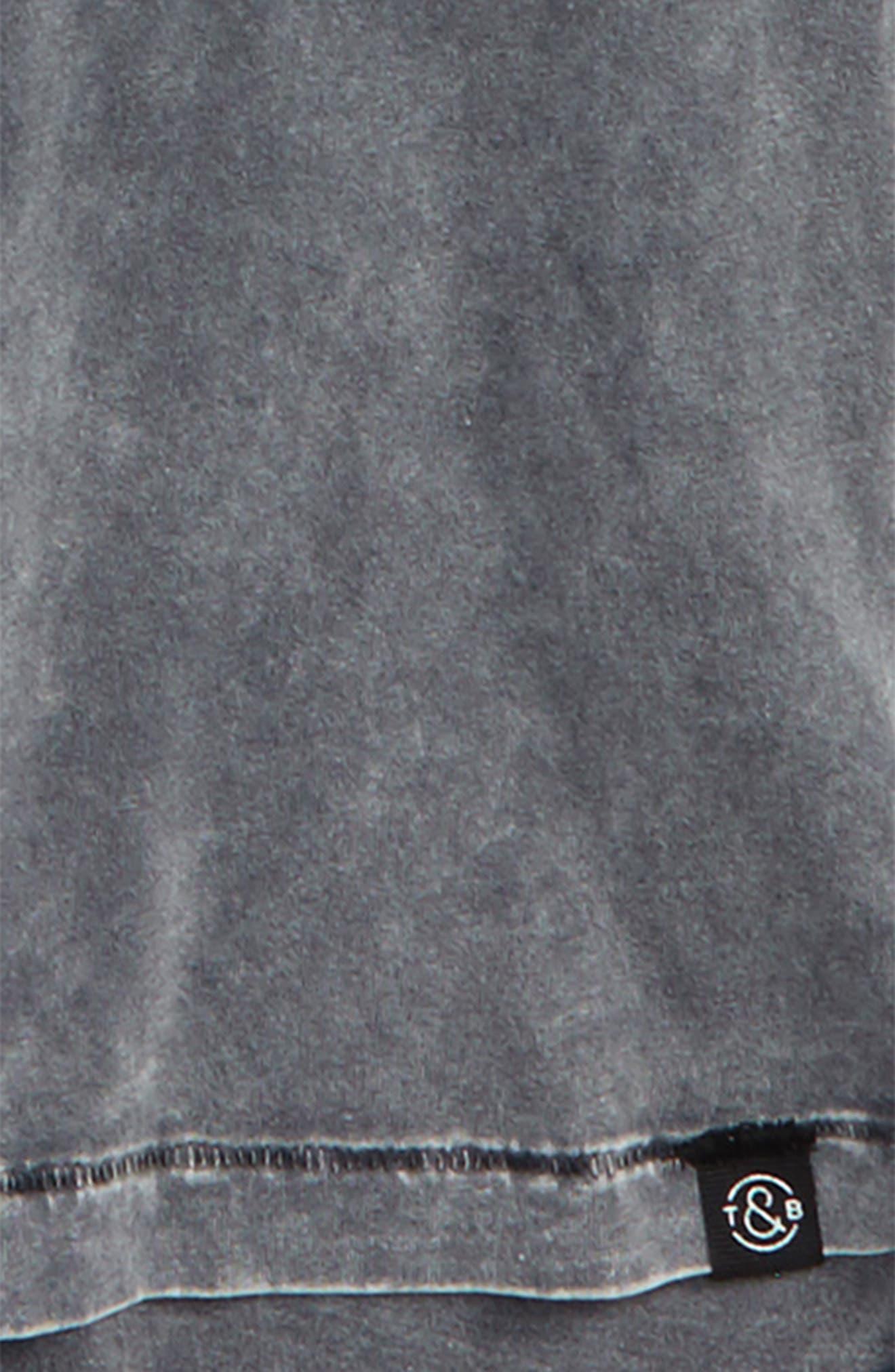 Polo Hem Crewneck T-Shirt,                             Alternate thumbnail 2, color,                             030