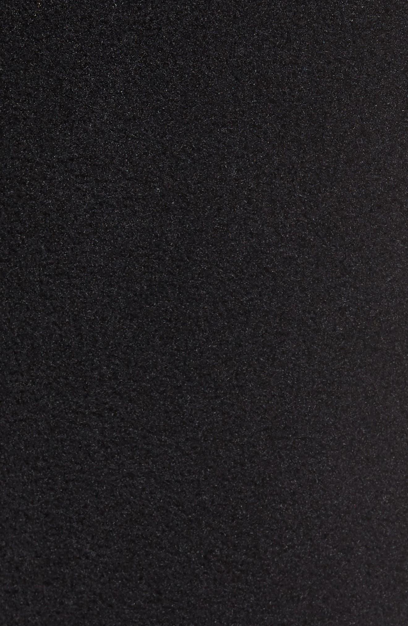 Synchilla<sup>®</sup> Fleece Pants,                             Alternate thumbnail 5, color,                             001