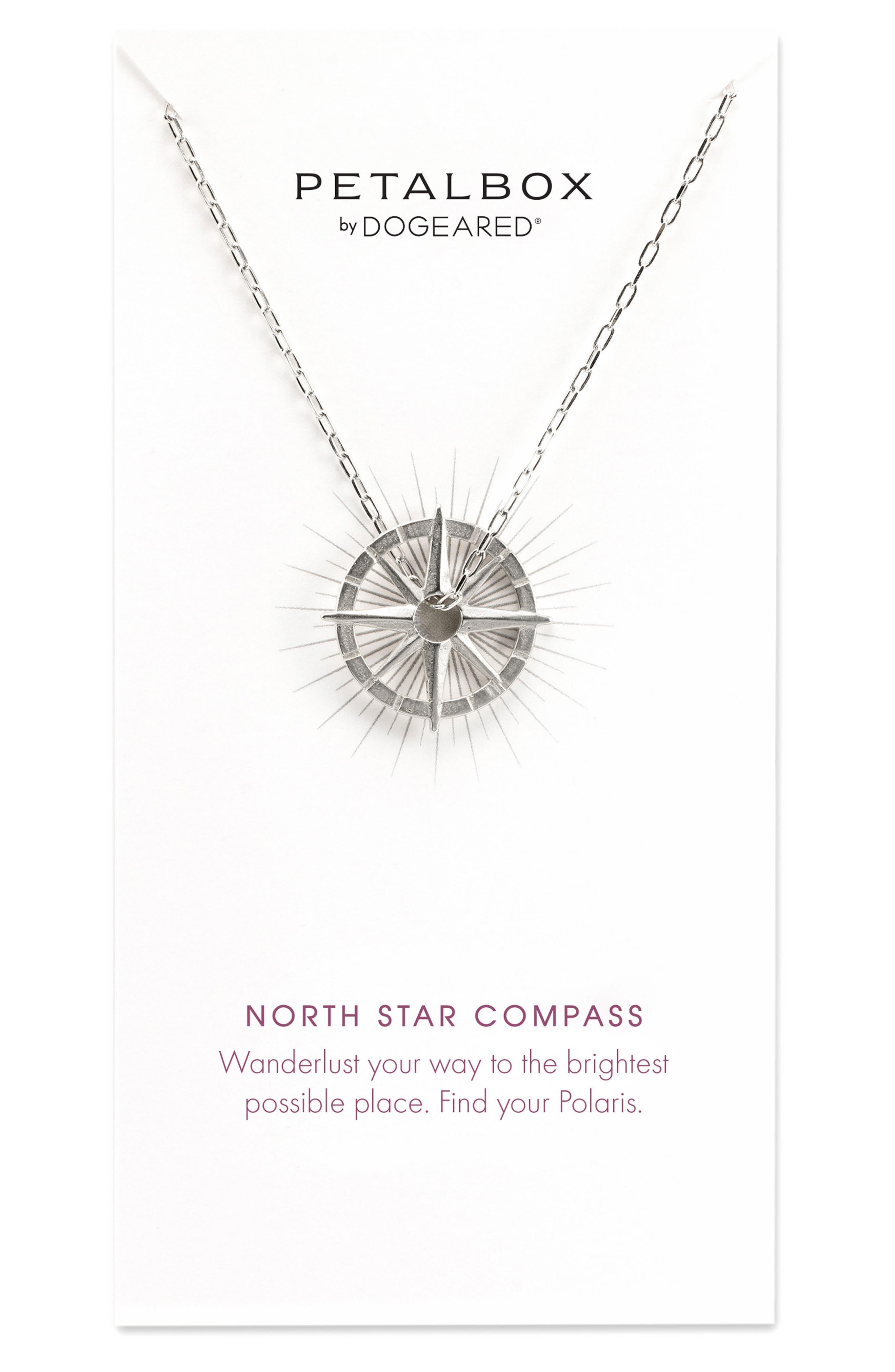 Petalbox North Star Compass Pendant Necklace,                             Main thumbnail 1, color,                             040