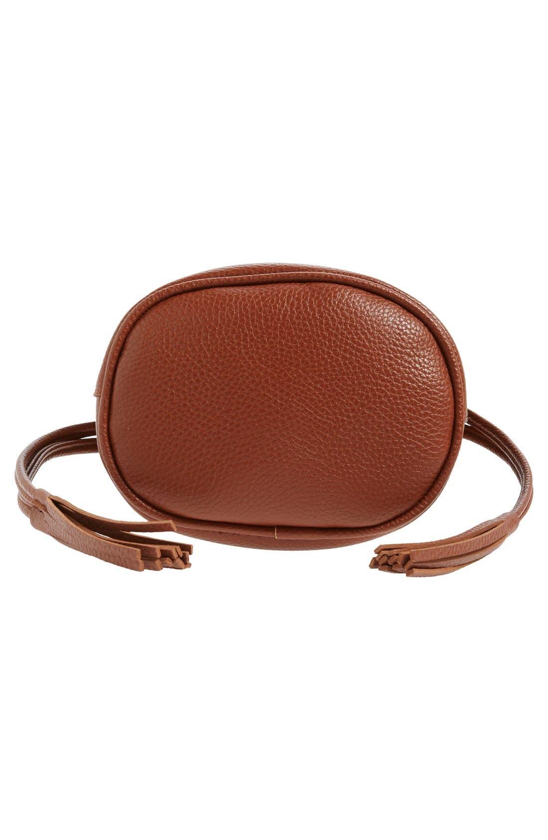 Mini Faux Leather Tassel Bucket Bag,                             Alternate thumbnail 18, color,