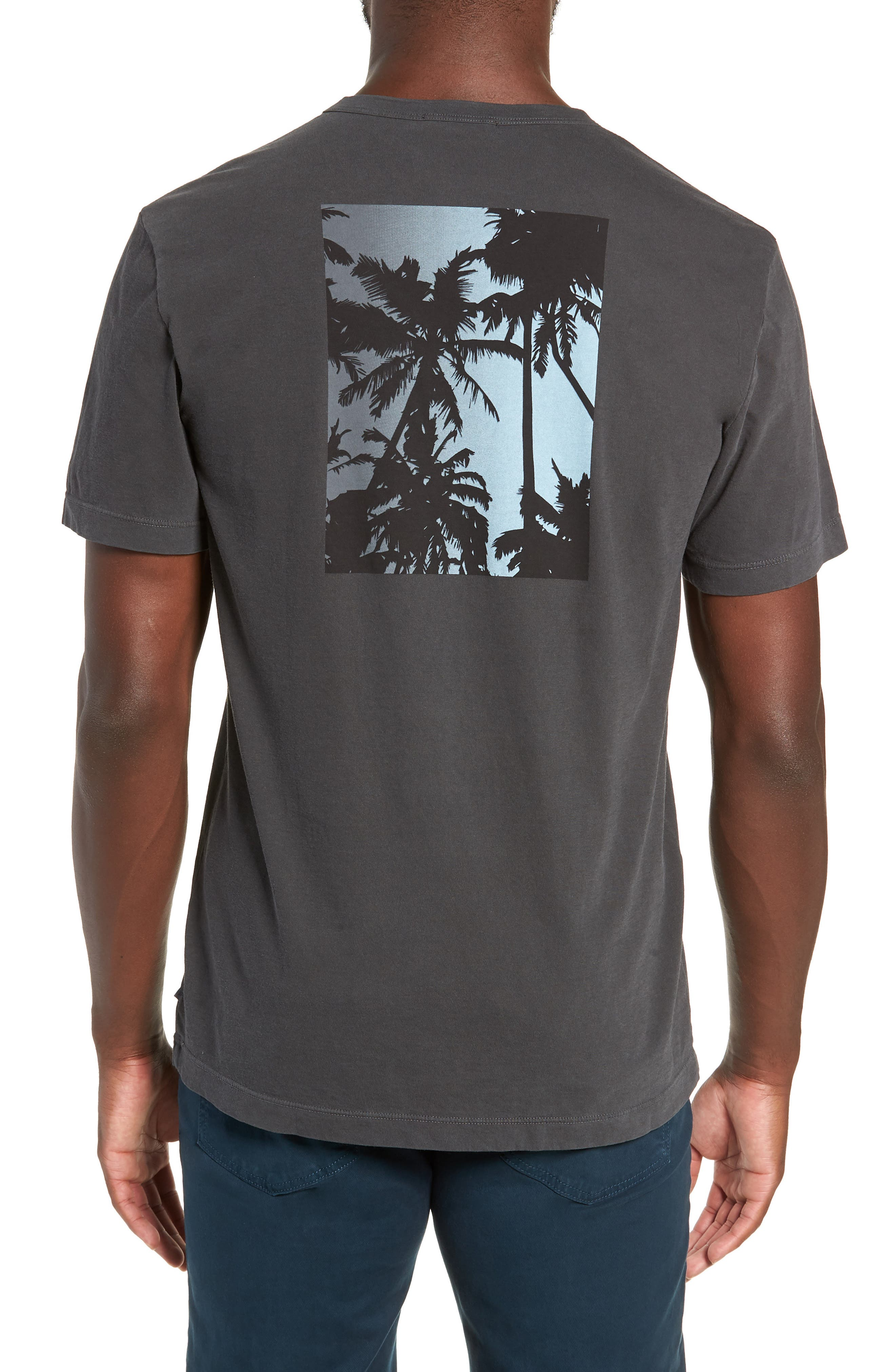 Combed Cotton Graphic T-Shirt,                             Alternate thumbnail 2, color,                             020