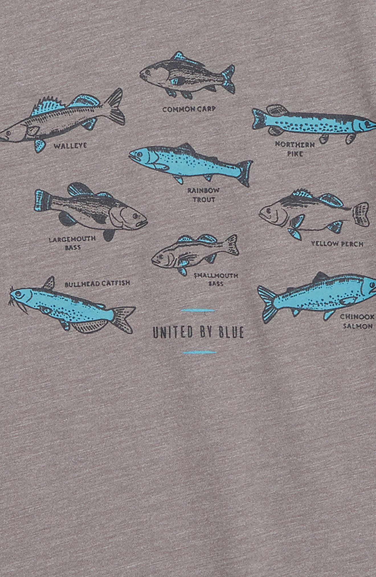 Go Fish T-Shirt,                             Alternate thumbnail 2, color,                             STEEL GREY
