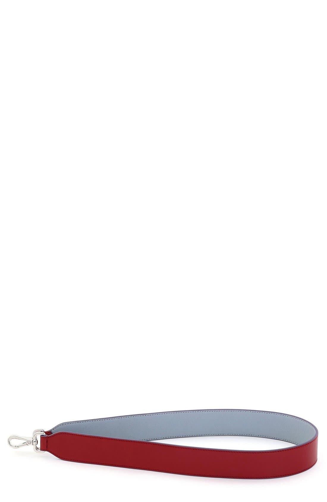 'Strap You' Reversible Calfskin Leather Handbag Strap,                             Main thumbnail 1, color,                             POWDER/RIBBES