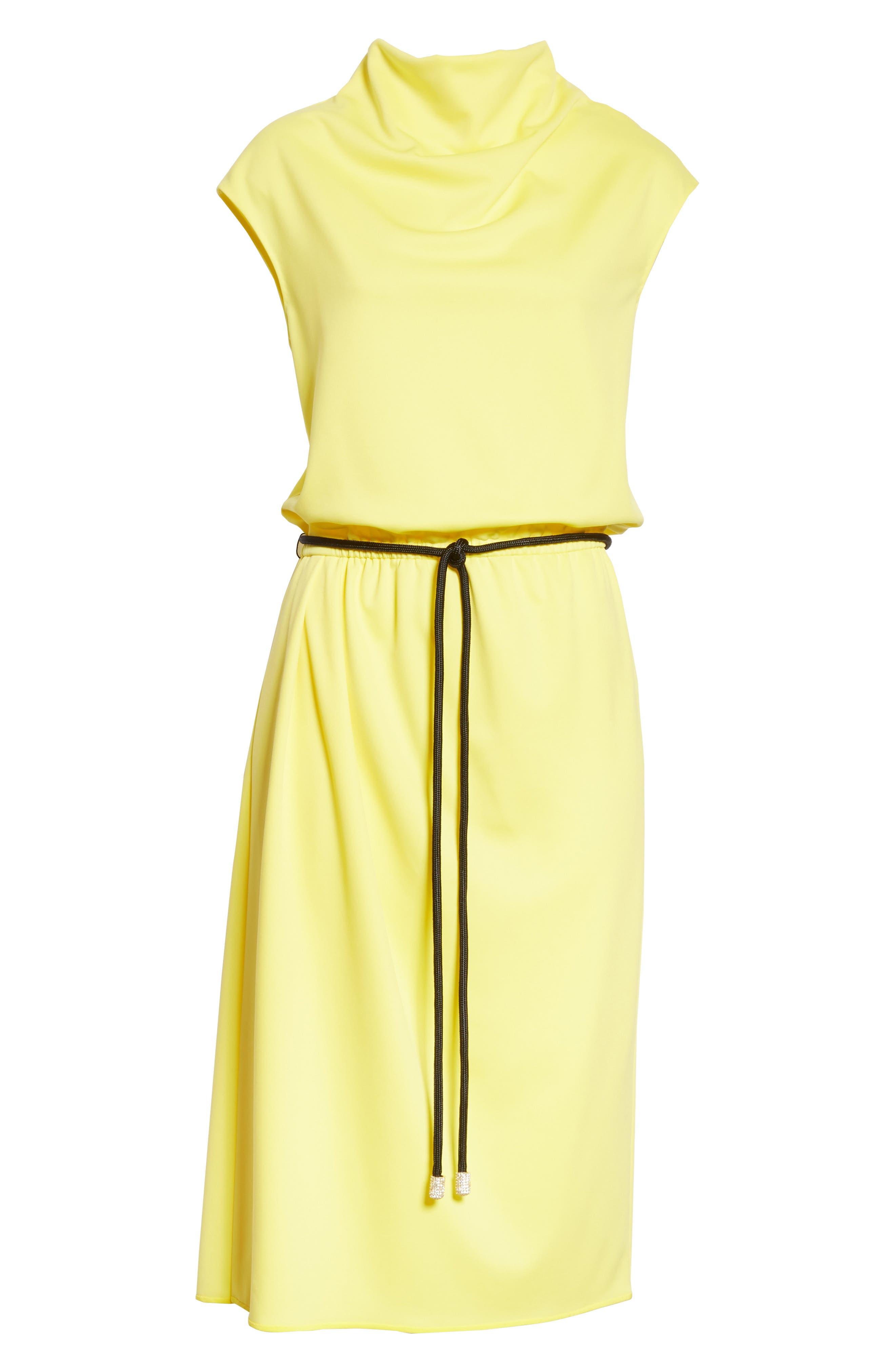 Cowl Neck Belted Dress,                             Alternate thumbnail 6, color,                             700