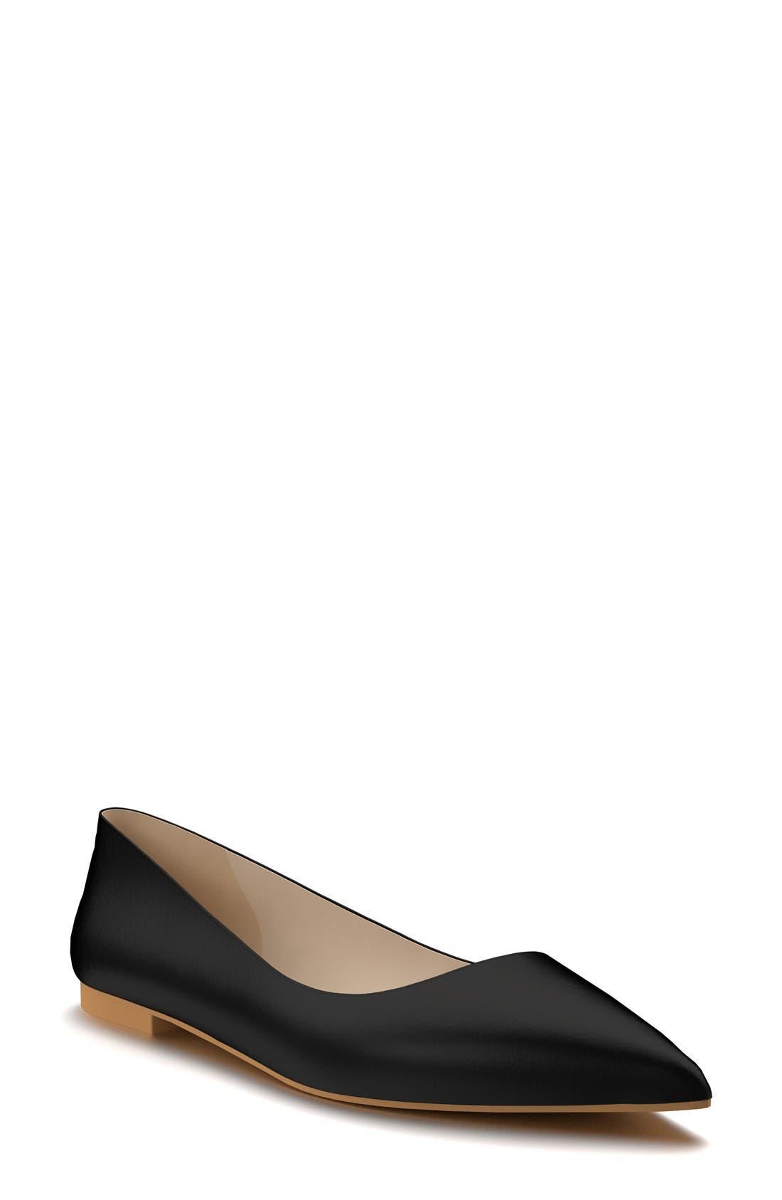 Pointy Toe Flat,                         Main,                         color, 001
