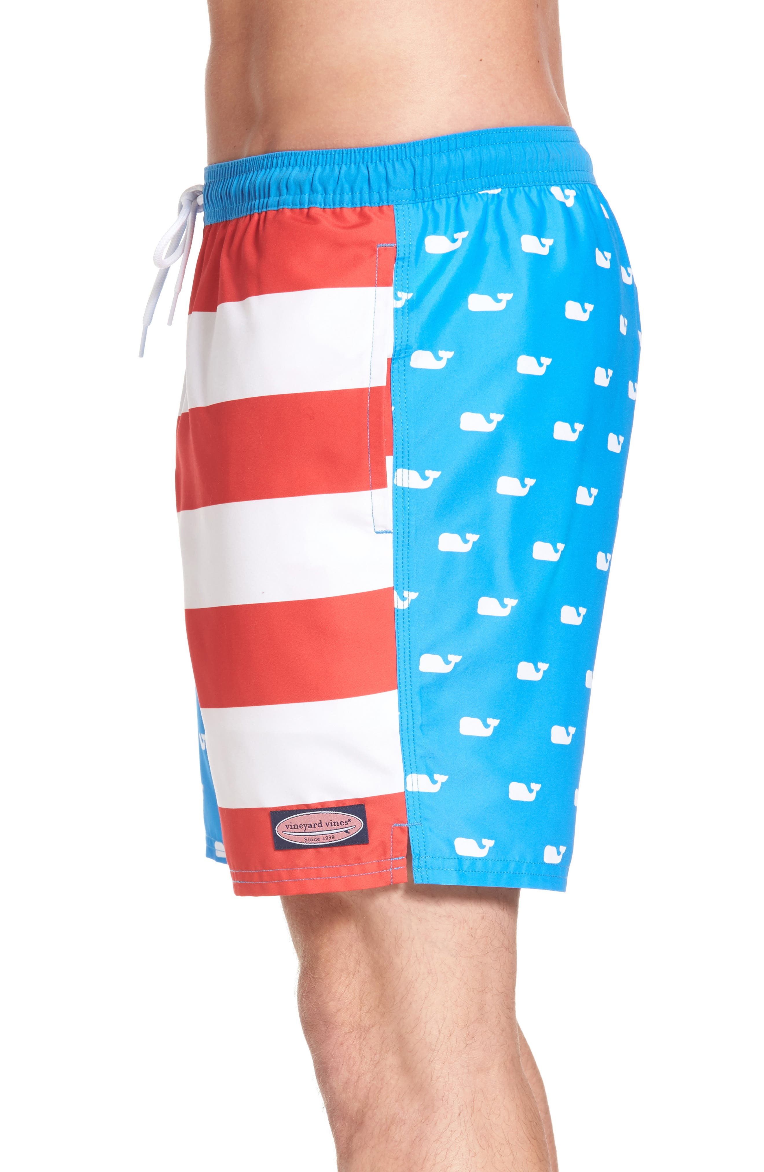 Whale Flag Chappy Swim Trunks,                             Alternate thumbnail 4, color,                             494