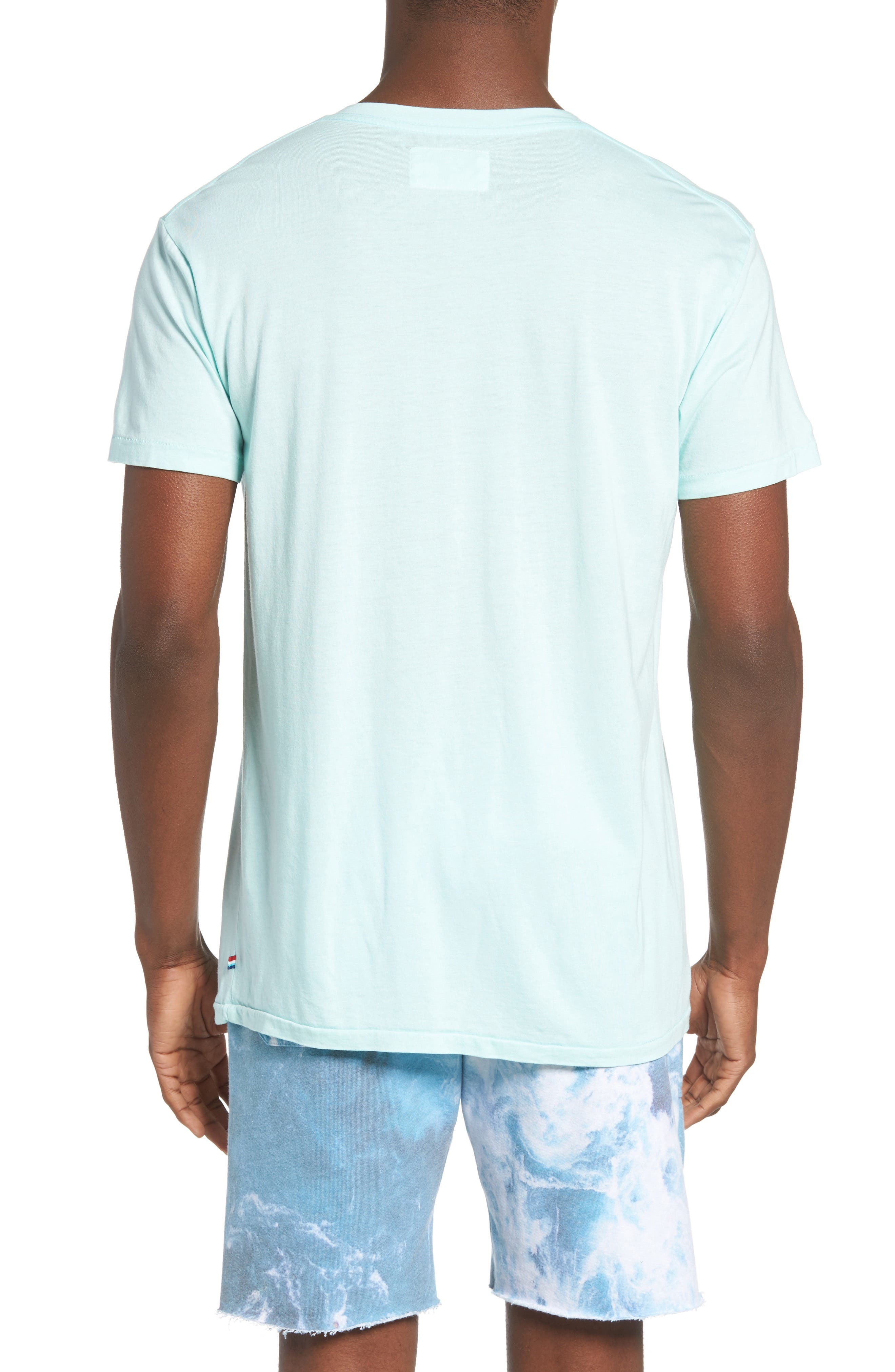 Essential V-Neck T-Shirt,                             Alternate thumbnail 18, color,
