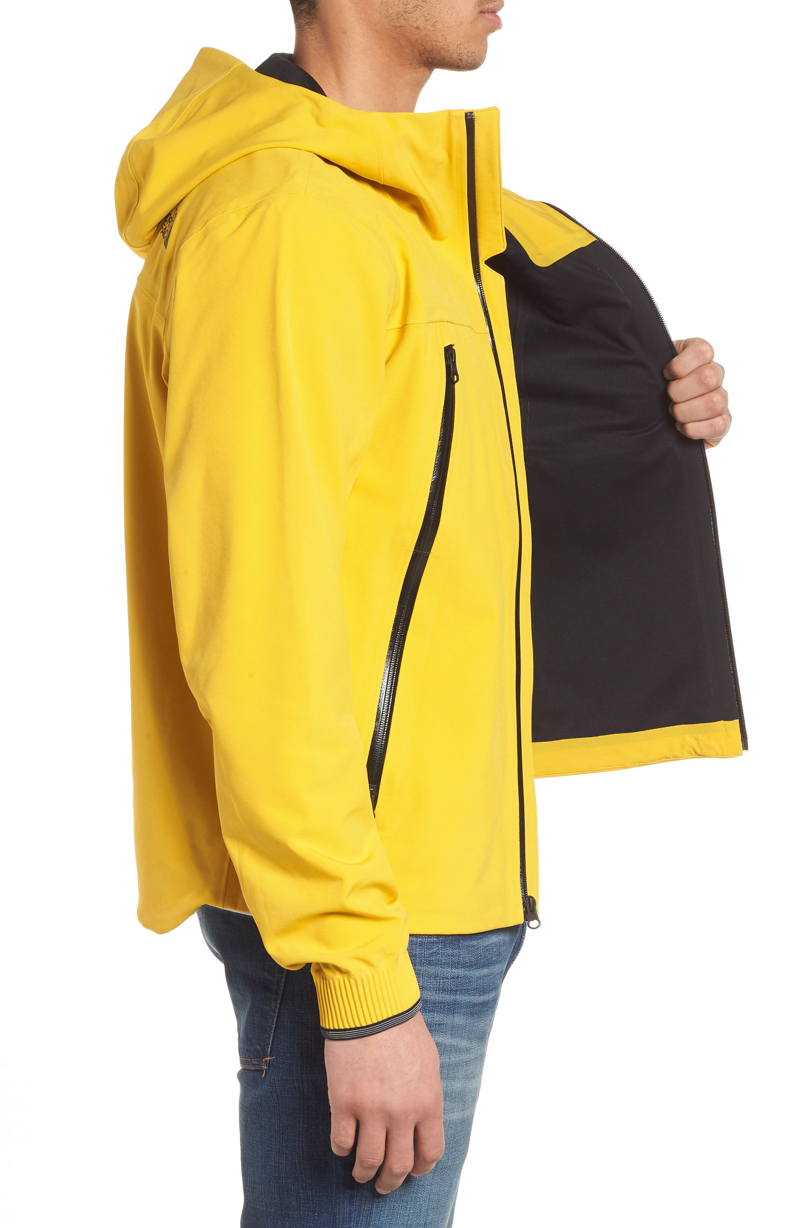 Apex Flex Gore-Tex<sup>®</sup> Waterproof Jacket,                             Alternate thumbnail 12, color,