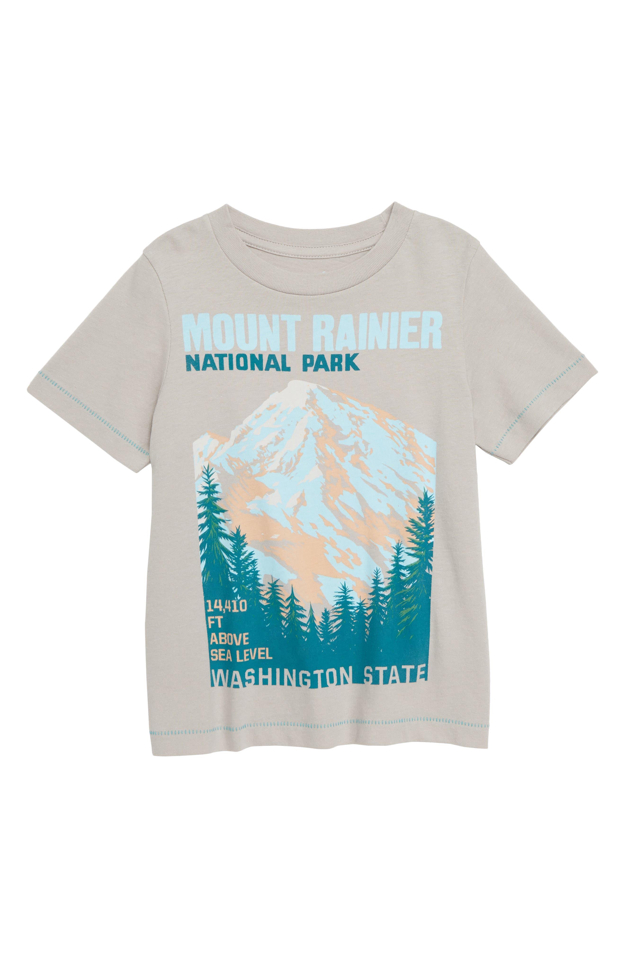 Mount Rainier Graphic T-Shirt,                         Main,                         color, GREY