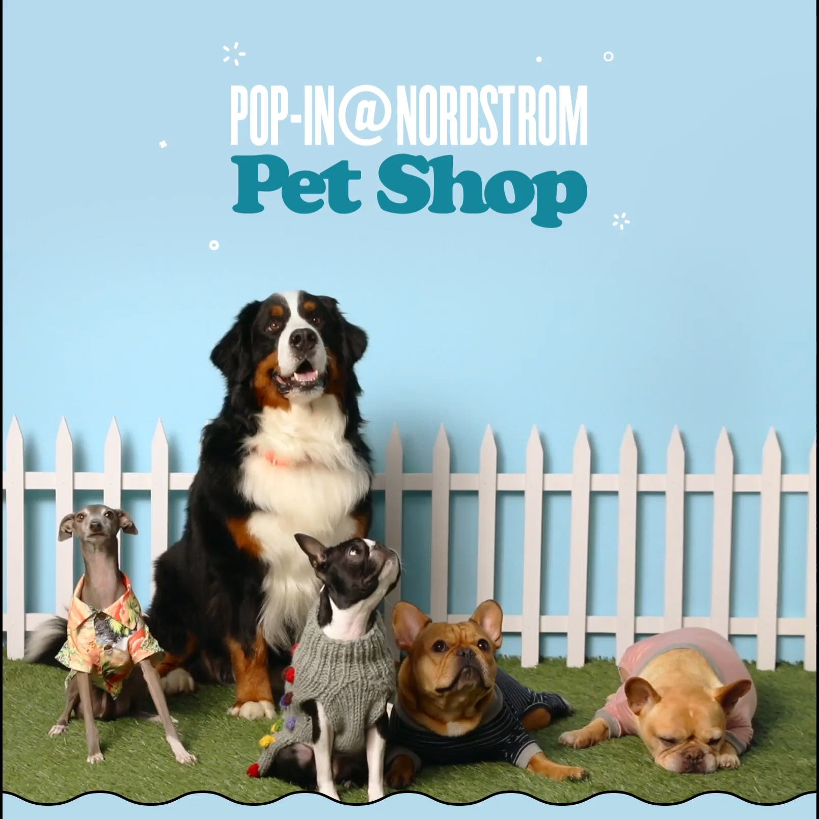 Pop-In@Nordstrom Pet Shop, February 14 to April 5.