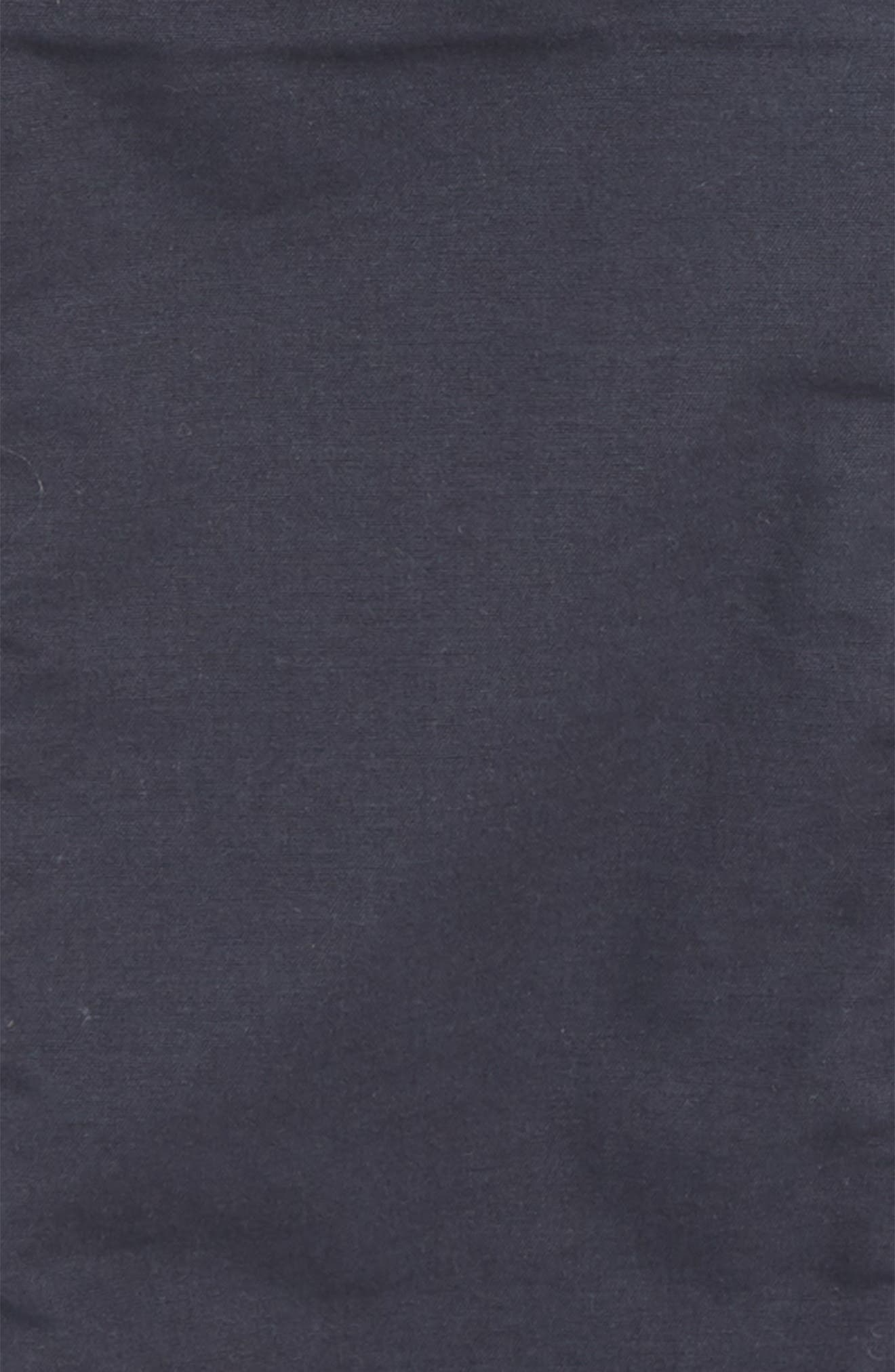 Lined Jogger Pants,                             Alternate thumbnail 2, color,                             411