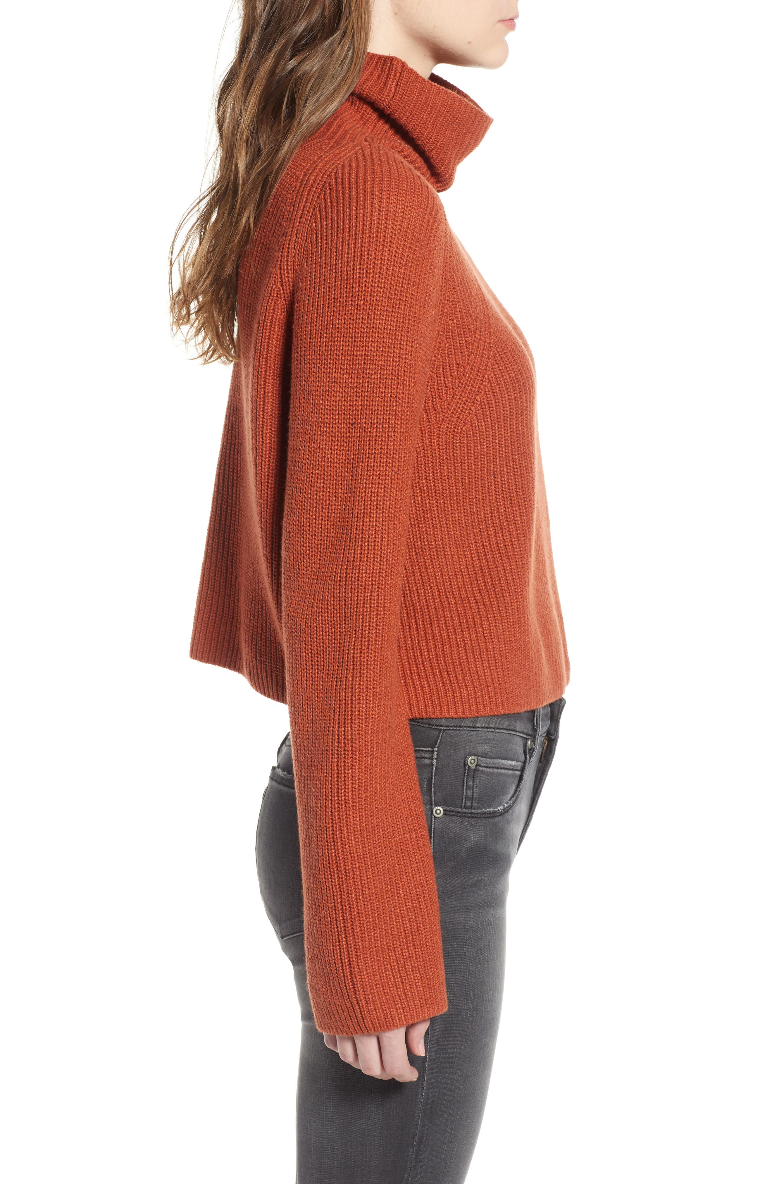 LEITH, Transfer Stitch Turtleneck Sweater, Alternate thumbnail 3, color, 210