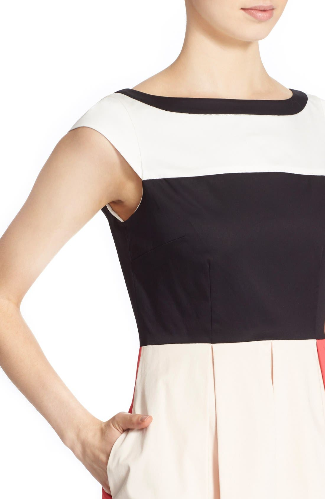 'adette' colorblock fit & flare dress,                             Alternate thumbnail 5, color,                             110