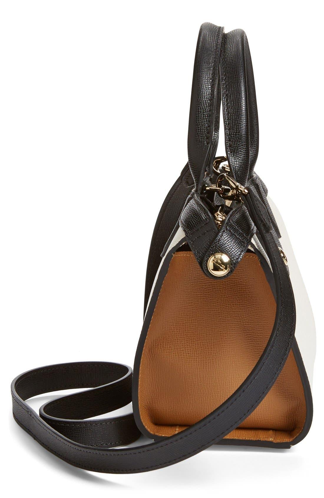'Small Le Pliage - Heritage' Leather Handbag,                             Alternate thumbnail 3, color,                             100