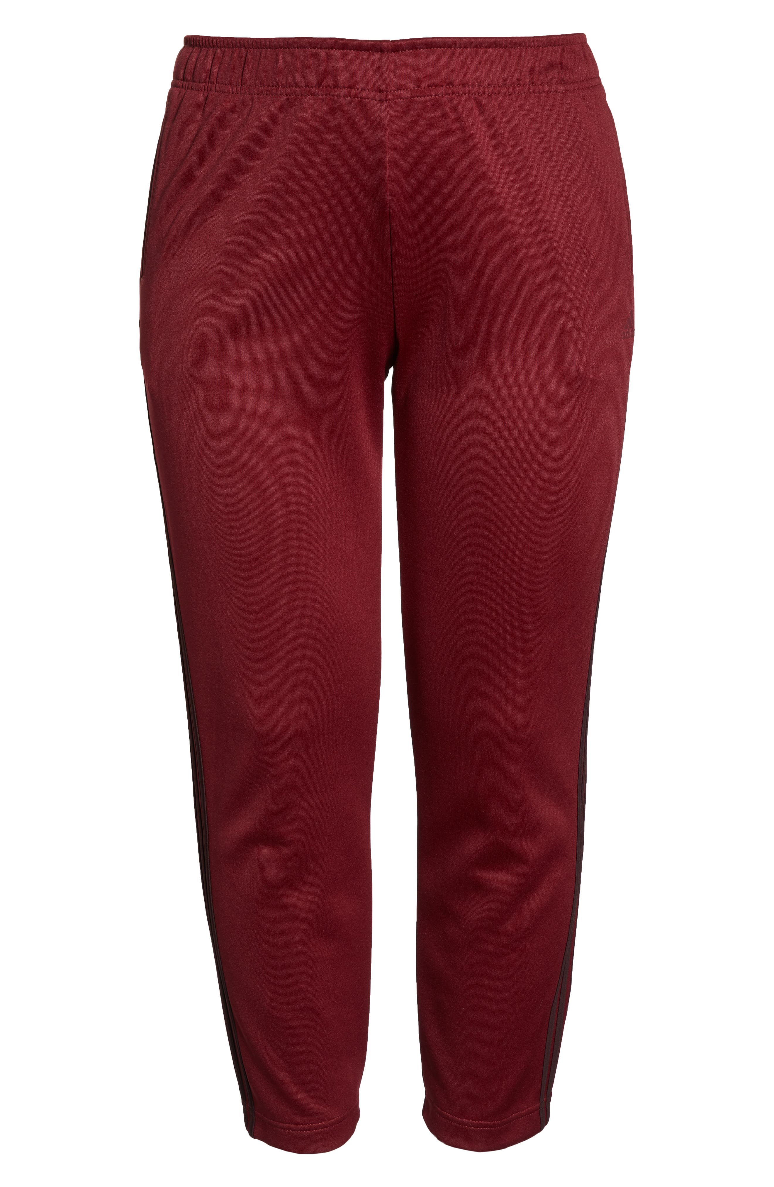 Tricot Snap Pants,                             Alternate thumbnail 12, color,                             NOBLE MAROON/ NIGHT RED