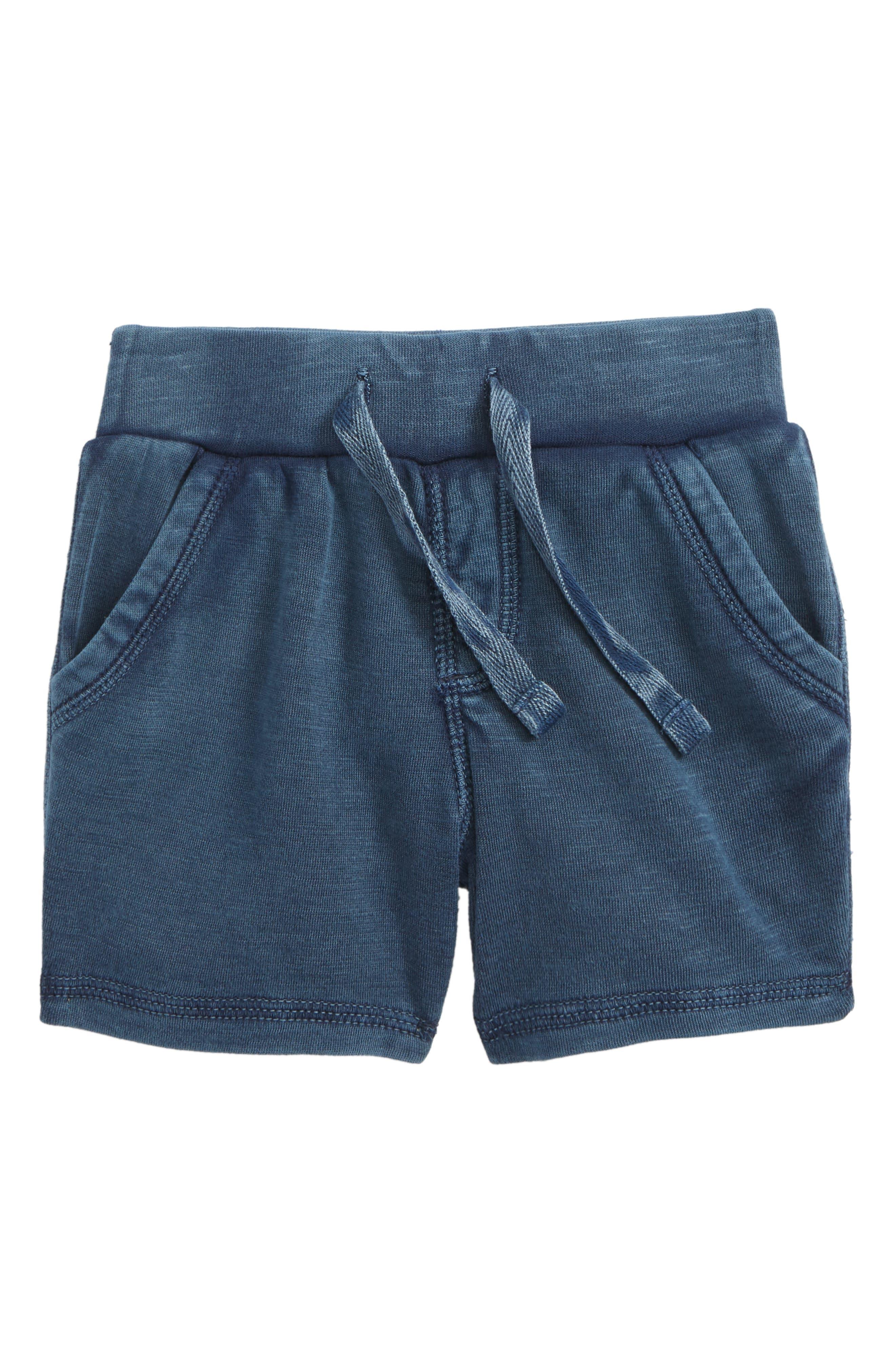 Knit Shorts,                         Main,                         color, 410