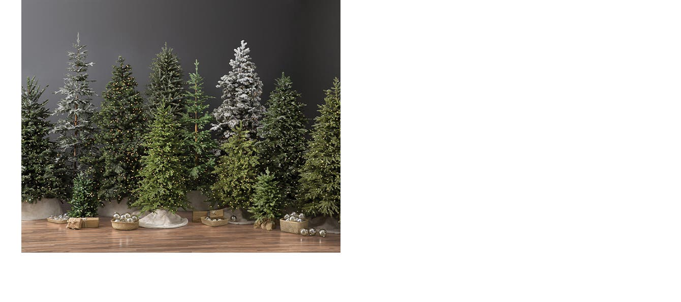 Green and flocked pre-lit Balsam Hill Christmas trees.