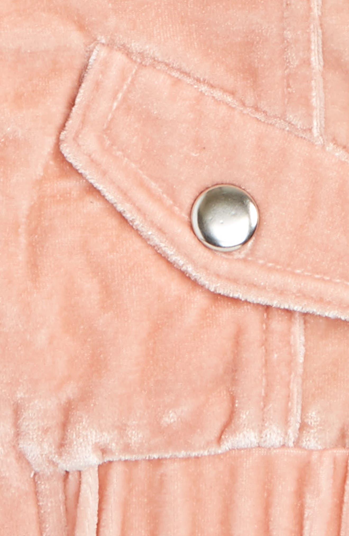 Mackenzie Velvet Bomber Jacket,                             Alternate thumbnail 2, color,