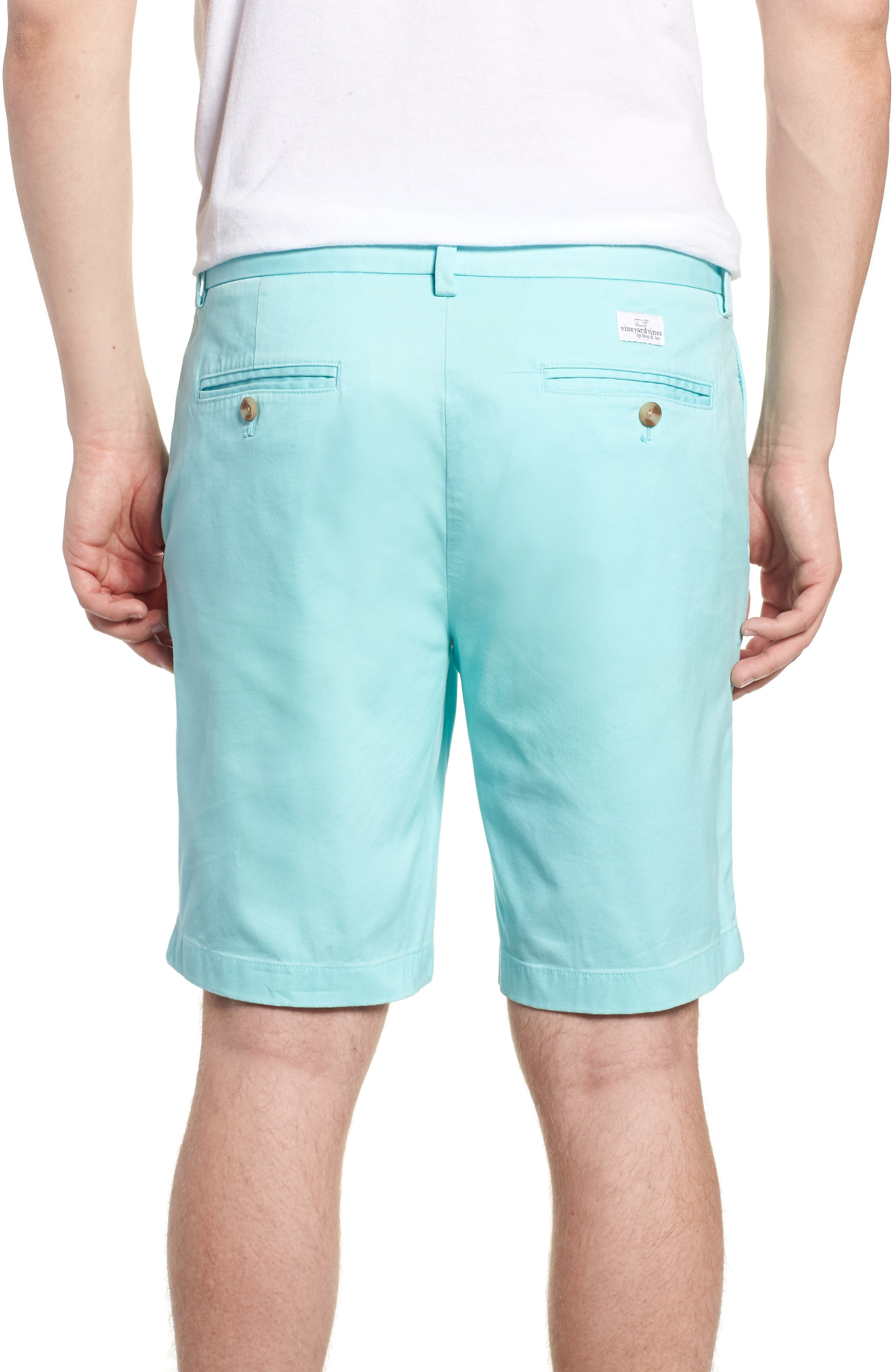 9 Inch Stretch Breaker Shorts,                             Alternate thumbnail 2, color,                             437