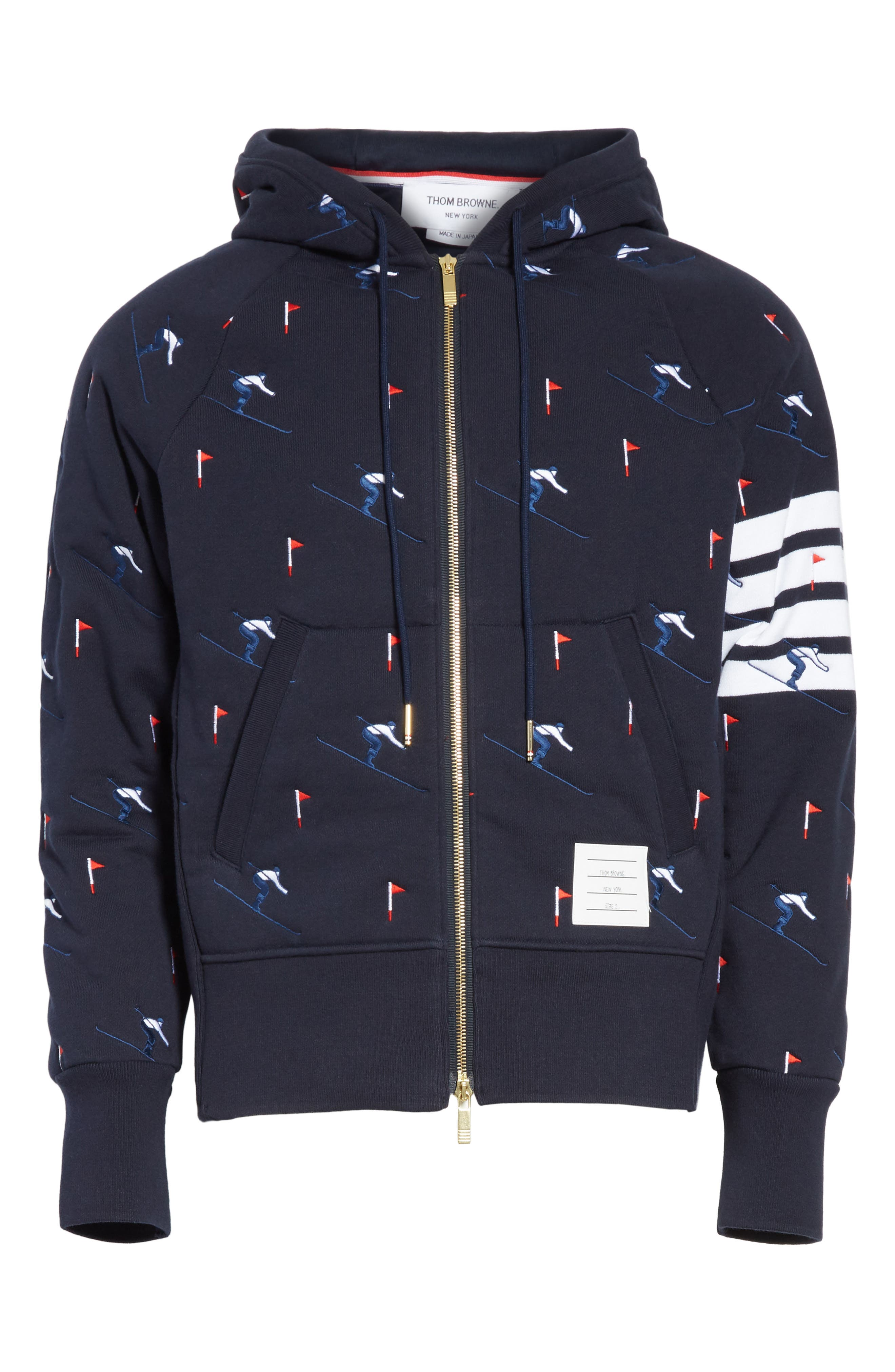 Embroidered Skier Zip Hoodie,                             Alternate thumbnail 6, color,                             415