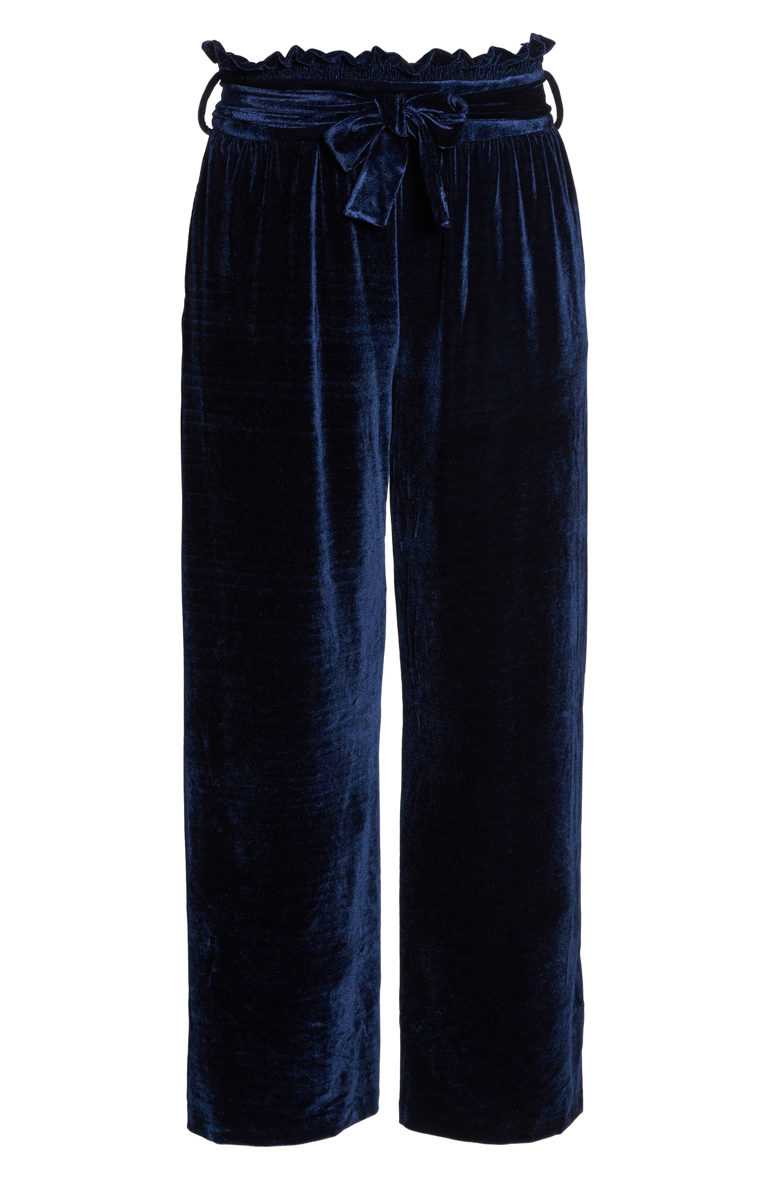 Wide Leg Velvet Pants,                             Alternate thumbnail 6, color,                             401