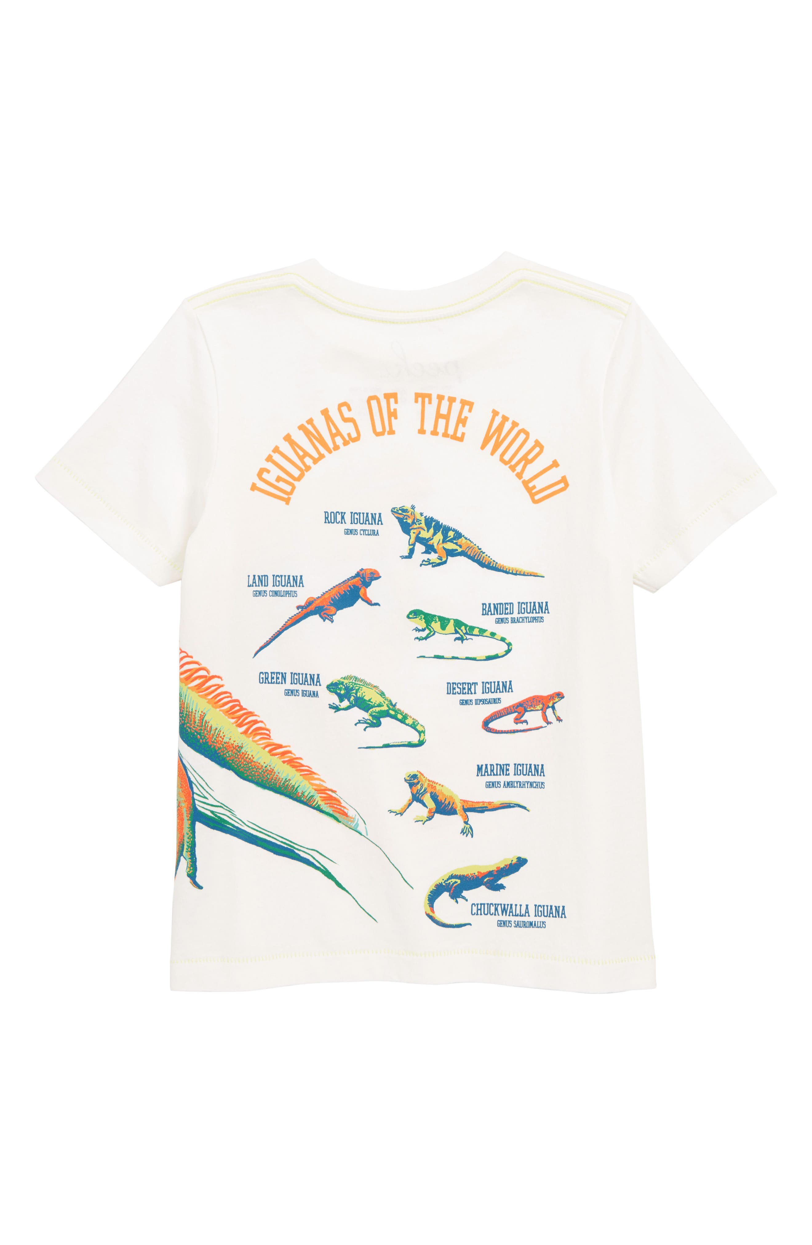 PEEK AREN'T YOU CURIOUS,                             Iguana Chill T-Shirt,                             Alternate thumbnail 2, color,                             IVORY
