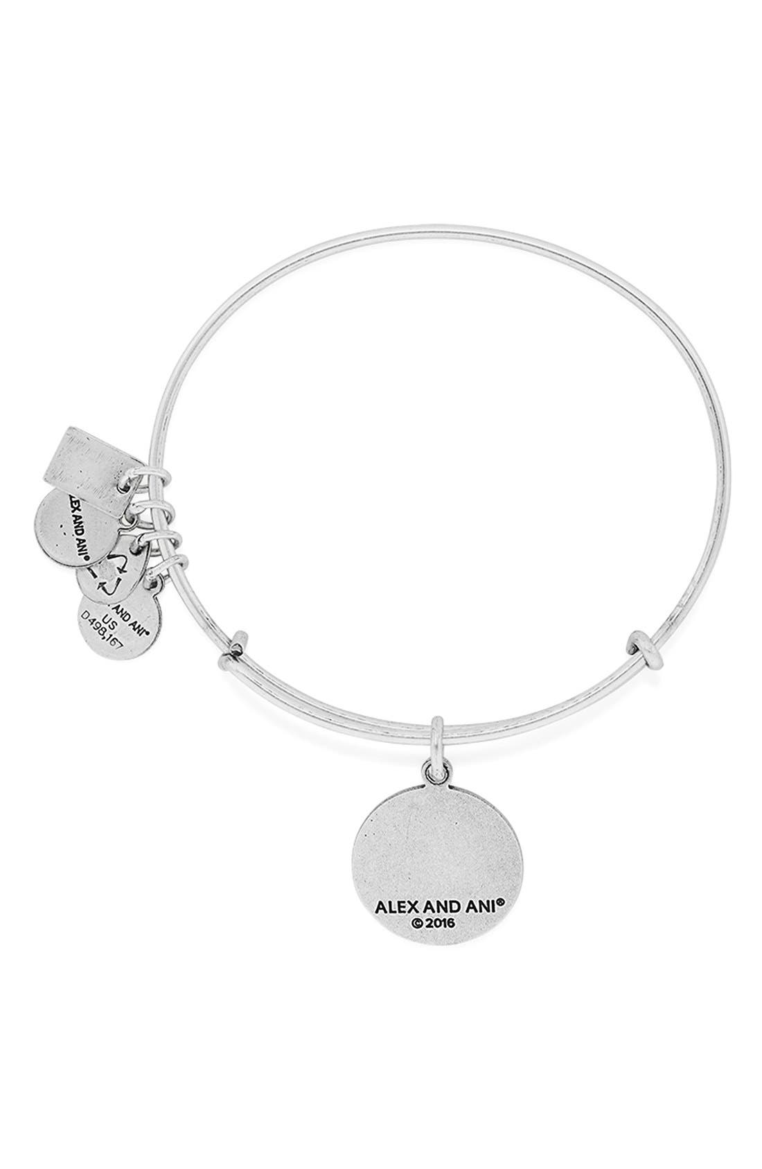 'Team USA - Swimming' Bangle Bracelet,                             Alternate thumbnail 2, color,                             040