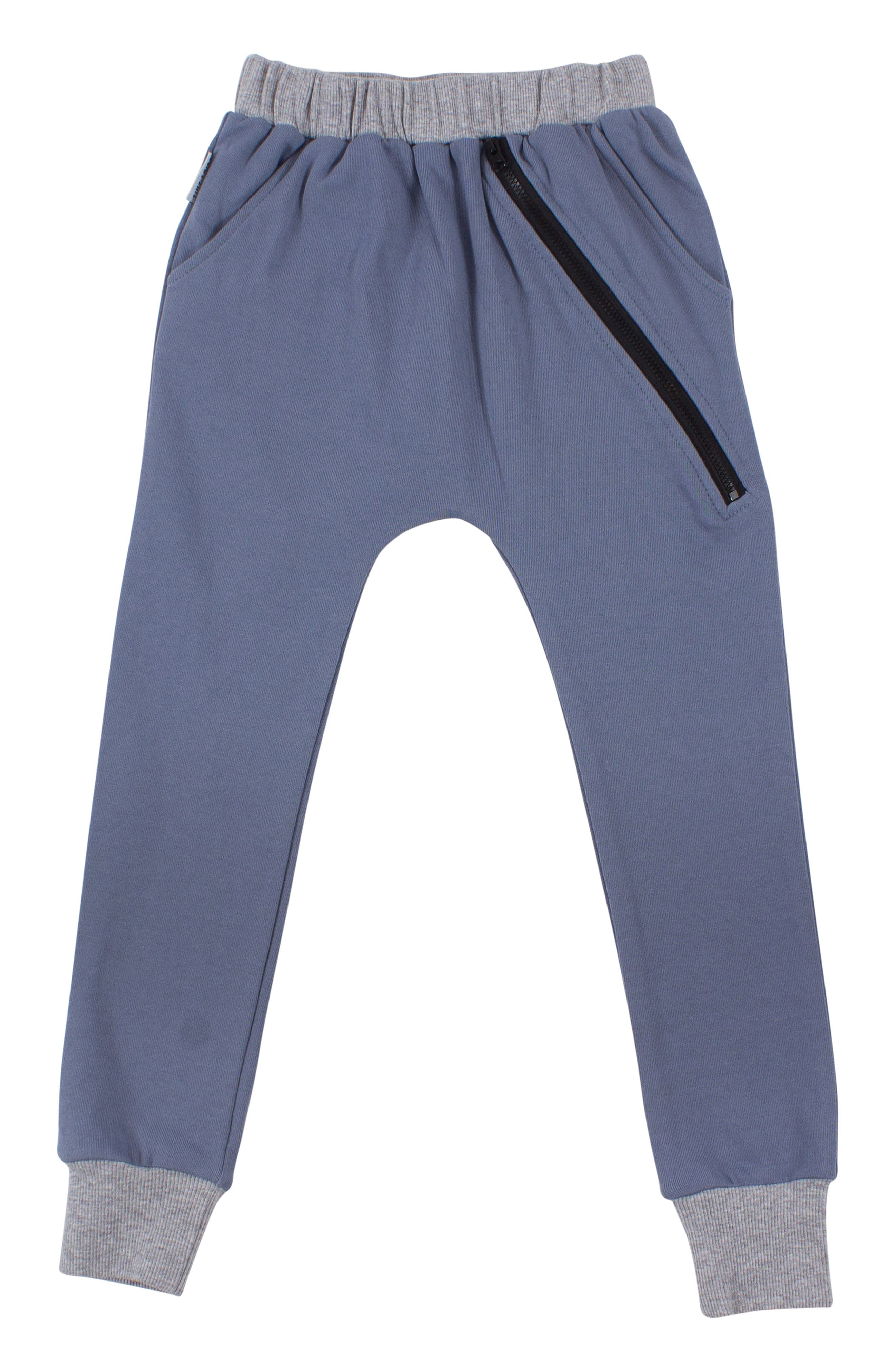Zip Sweatpants,                         Main,                         color, BLUE