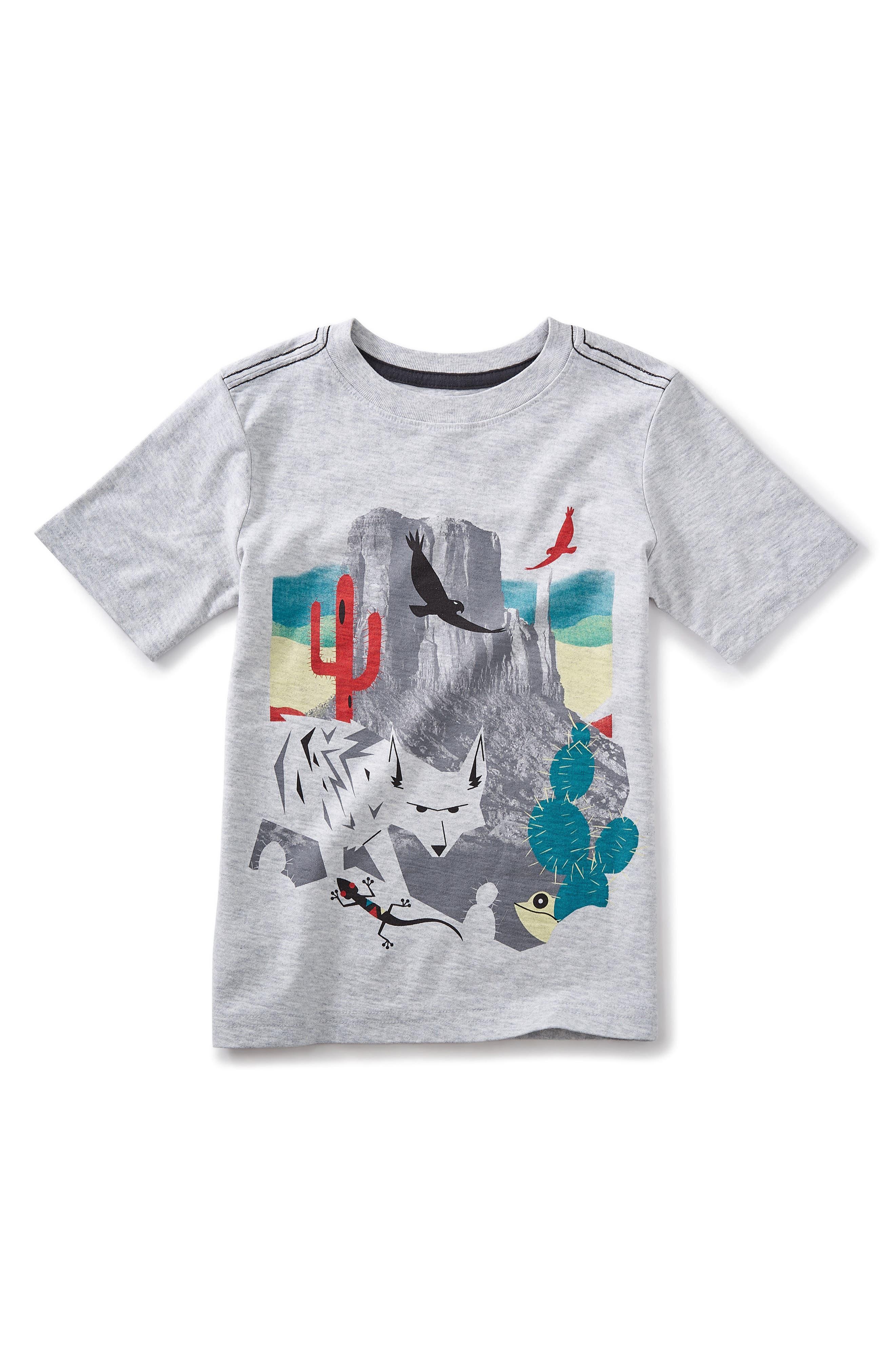 Canyon Lands Graphic T-Shirt,                             Main thumbnail 1, color,                             020